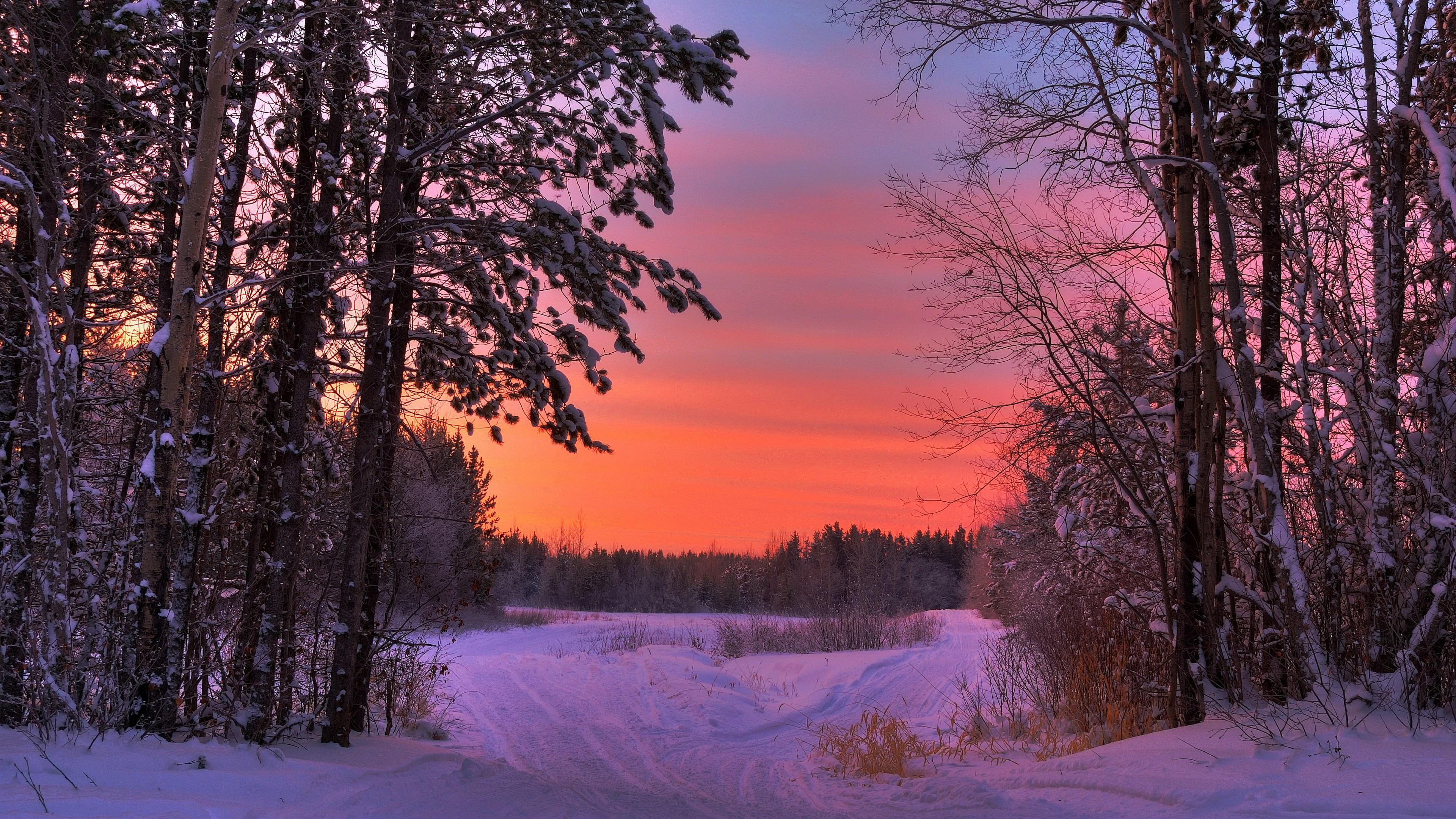 Desktop Wallpaper Winter Scenes (47+ pictures)