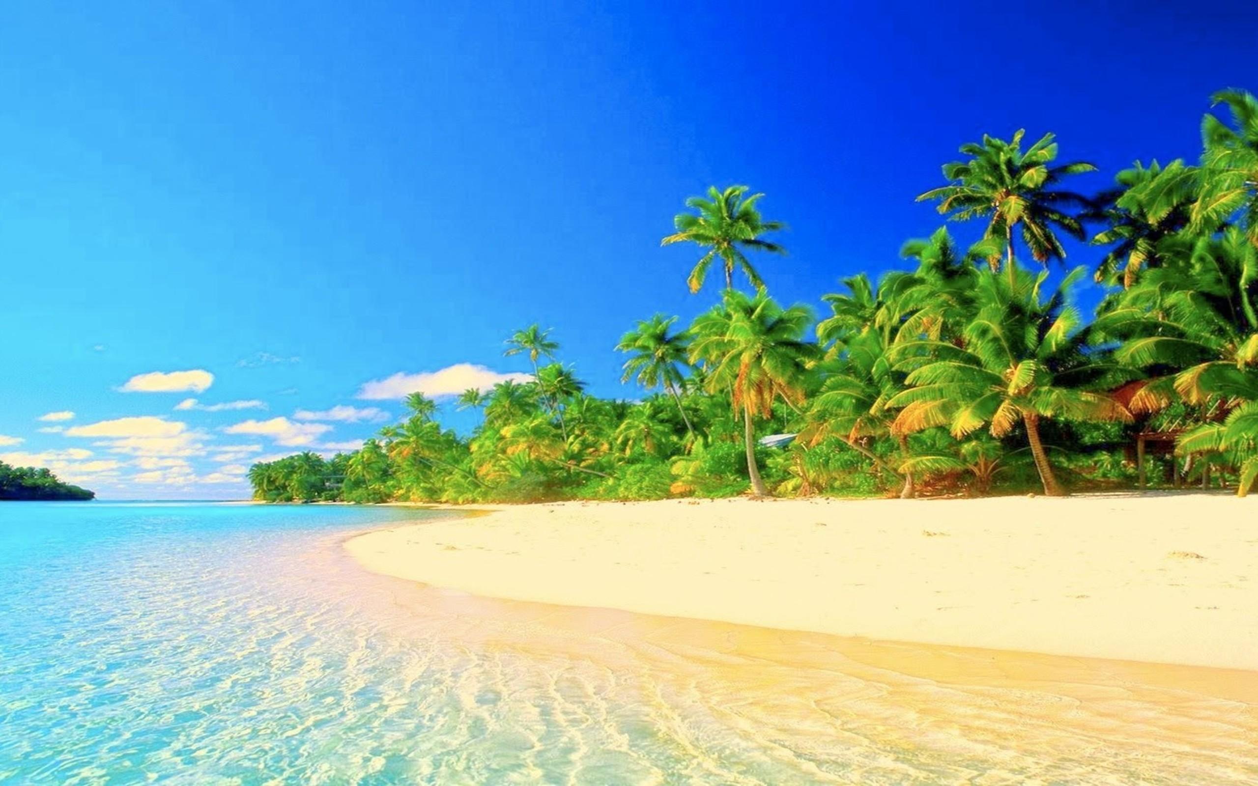 Tropical Paradise Beach Hd Wallpaper For Nexus 7 Screens: Tropical Wallpaper Desktop (46+ Pictures