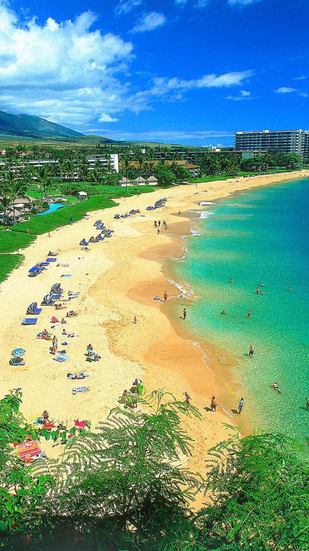 Hawaii Background Images 55 Pictures