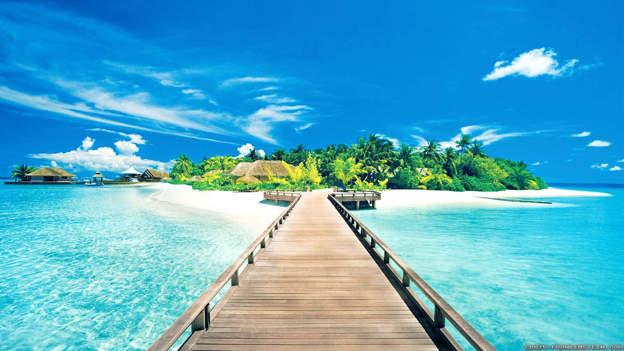 Wallpaper Tropical Beach 69 Pictures