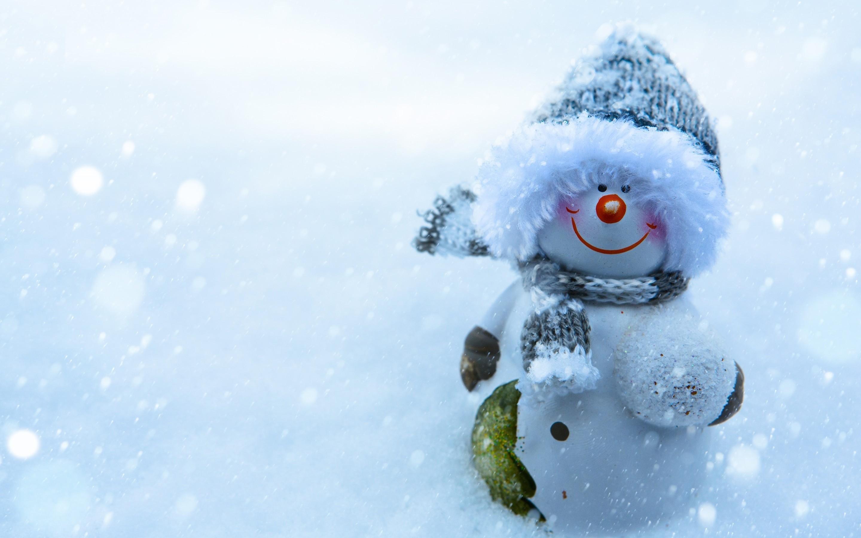 Snowman Desktop Backgrounds 61 Pictures