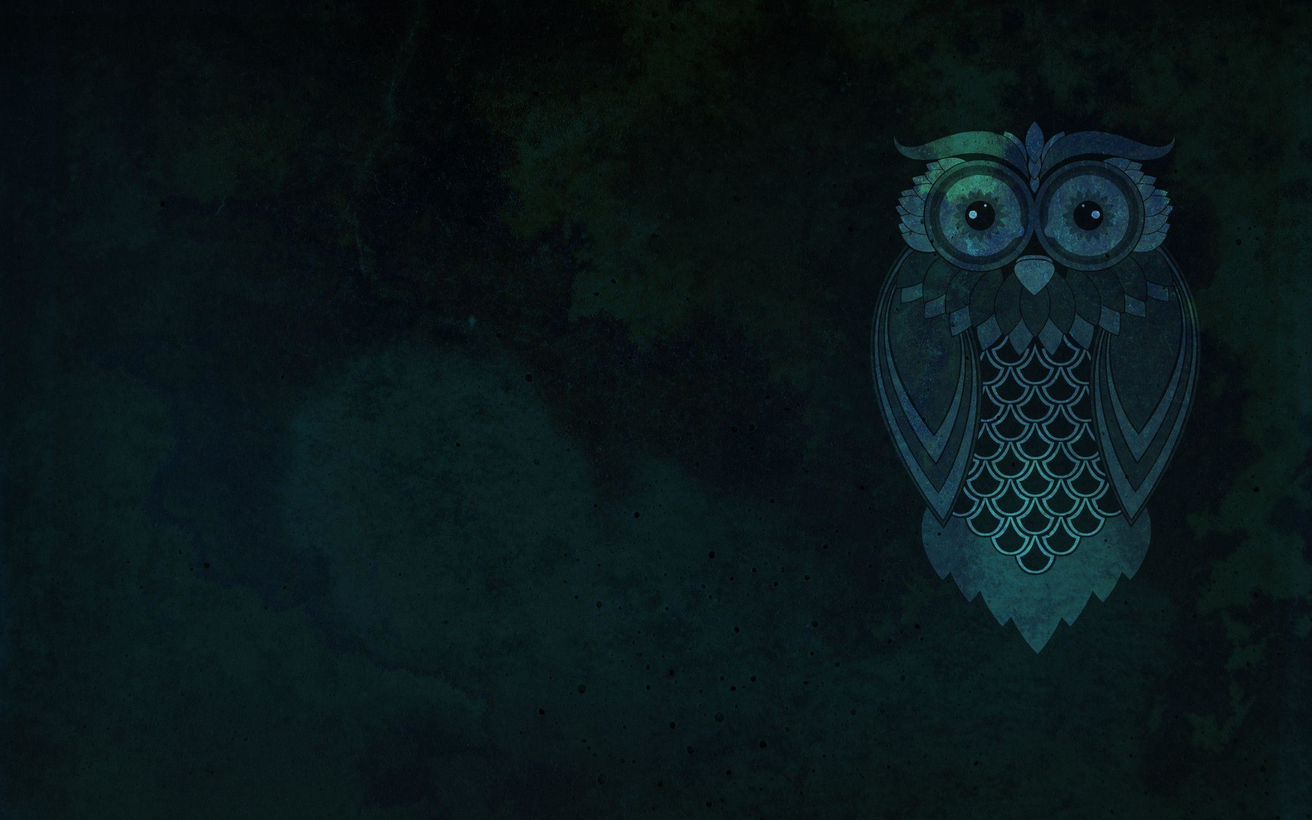 Owl Wallpaper For Computer 76 Pictures