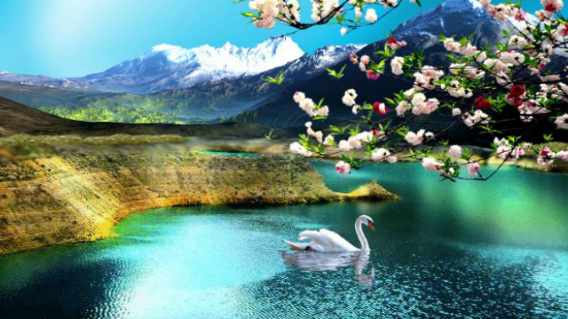 Desktop Nature Backgrounds 64 Pictures