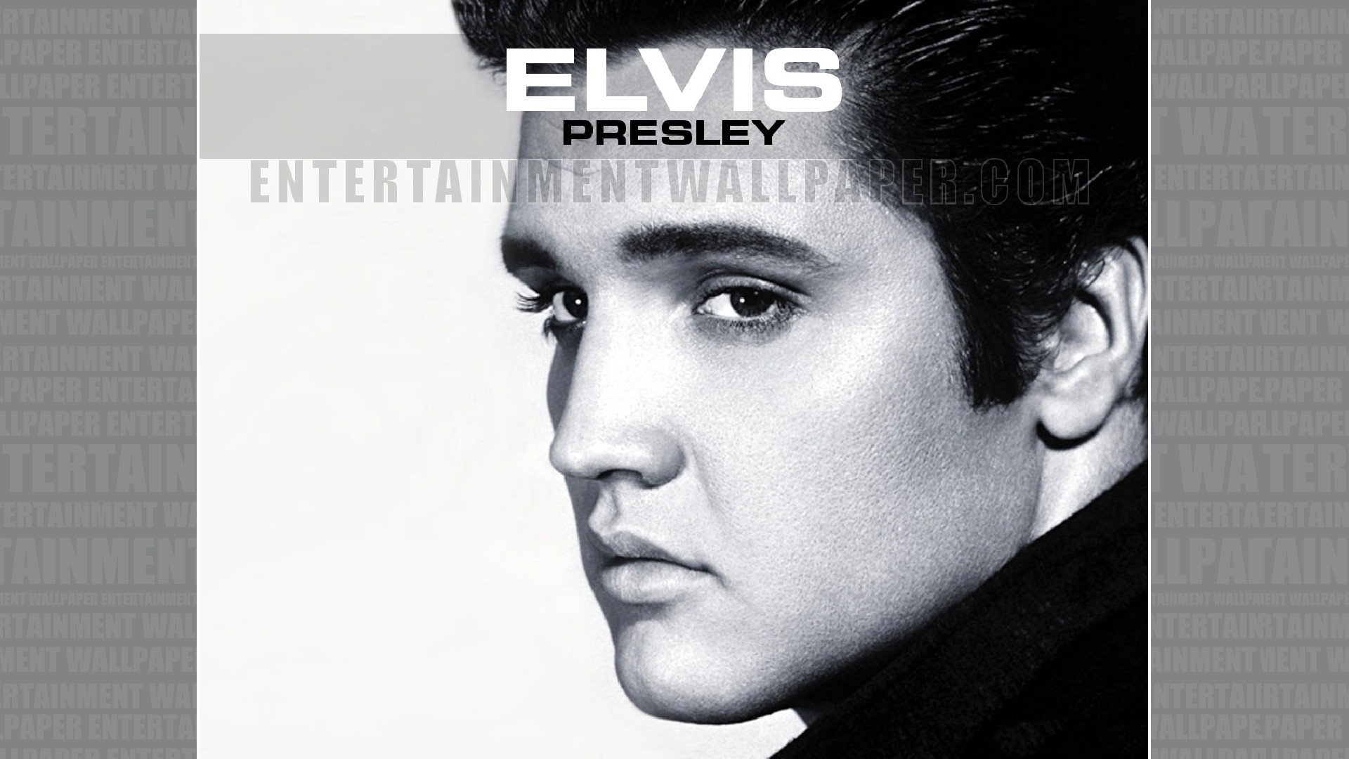 Elvis Presley Wallpaper 61 Pictures