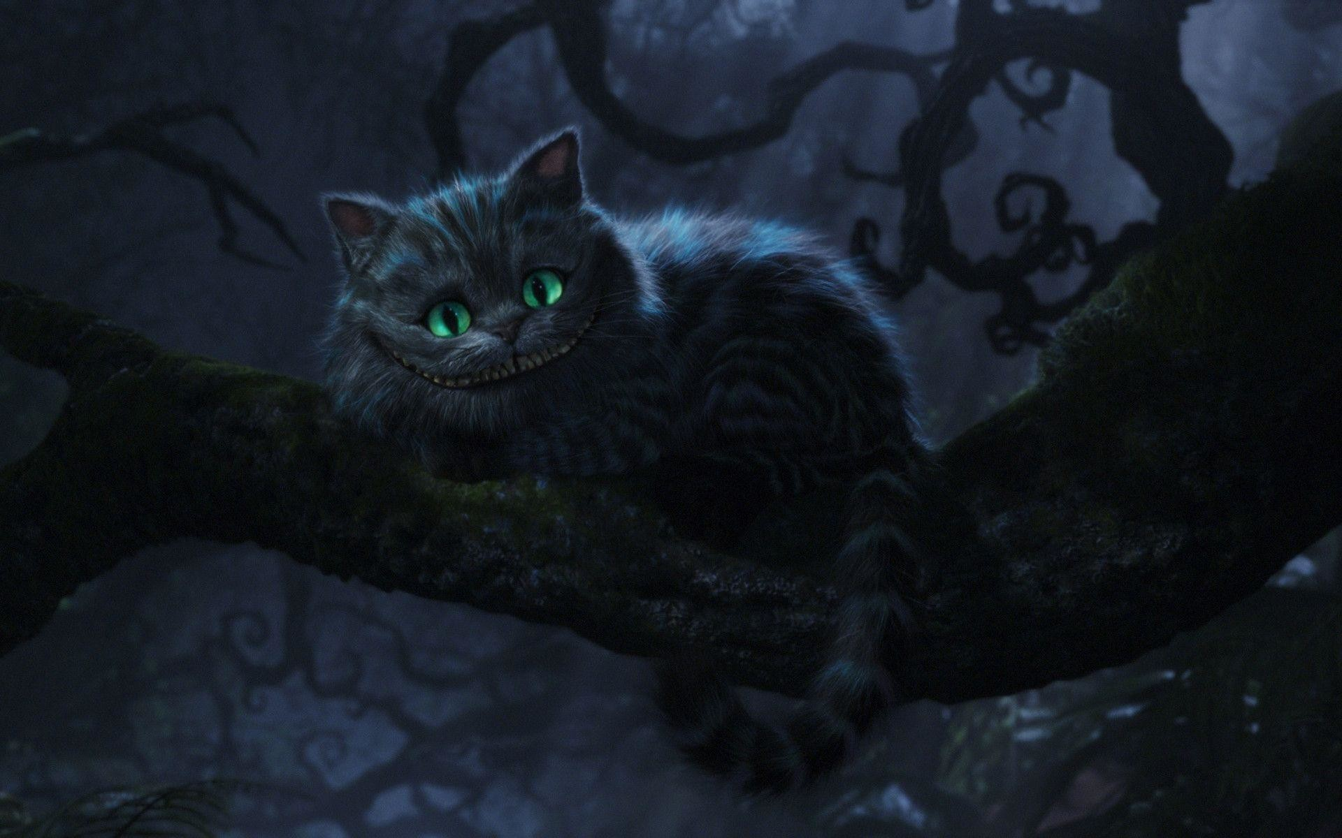 Cheshire Cat Background 58 Pictures
