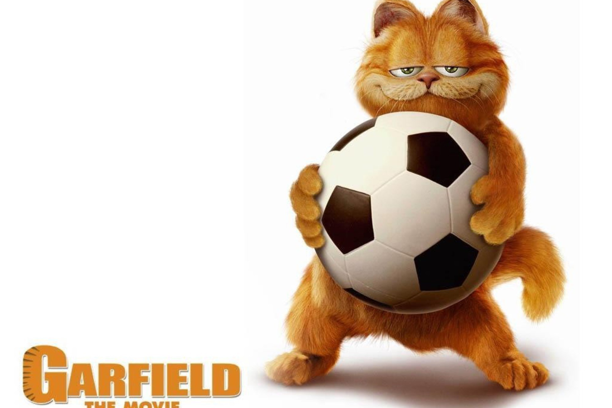 Funny Garfield Wallpaper 61 Pictures
