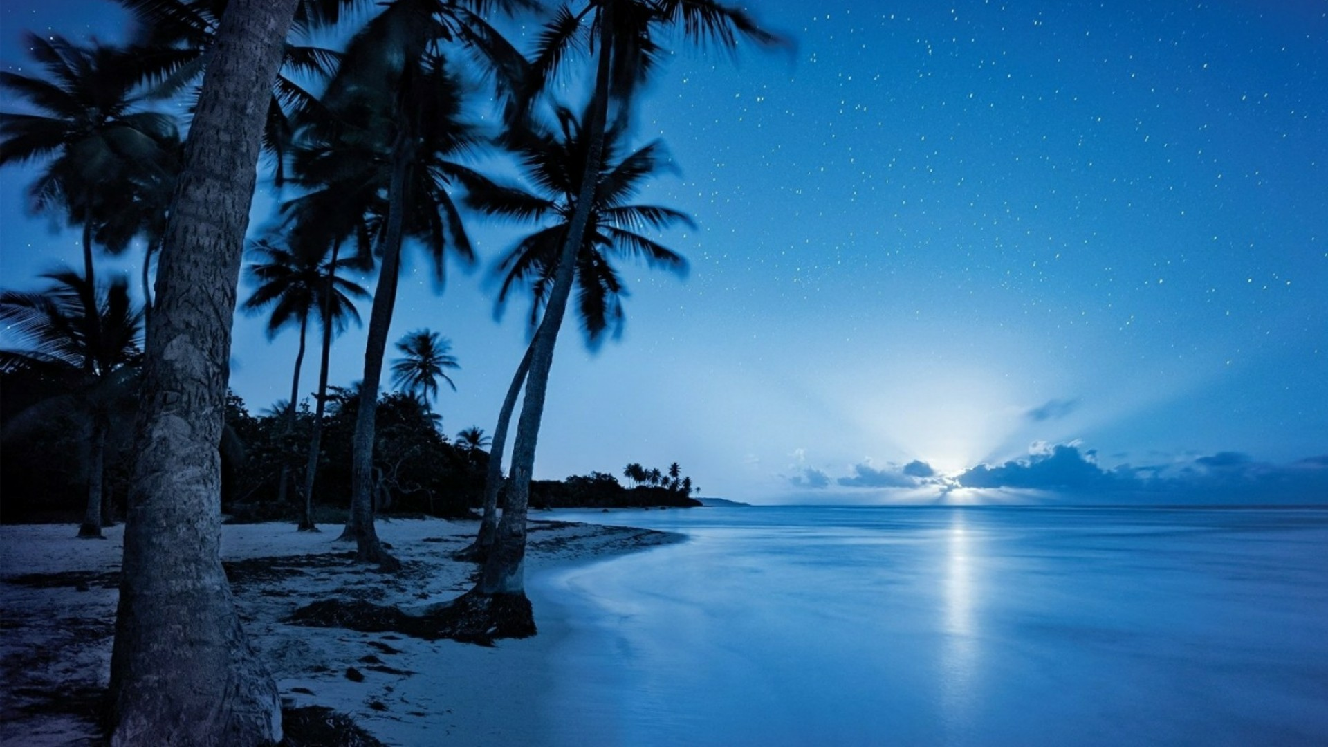 Night Beach Wallpapers 76 Pictures
