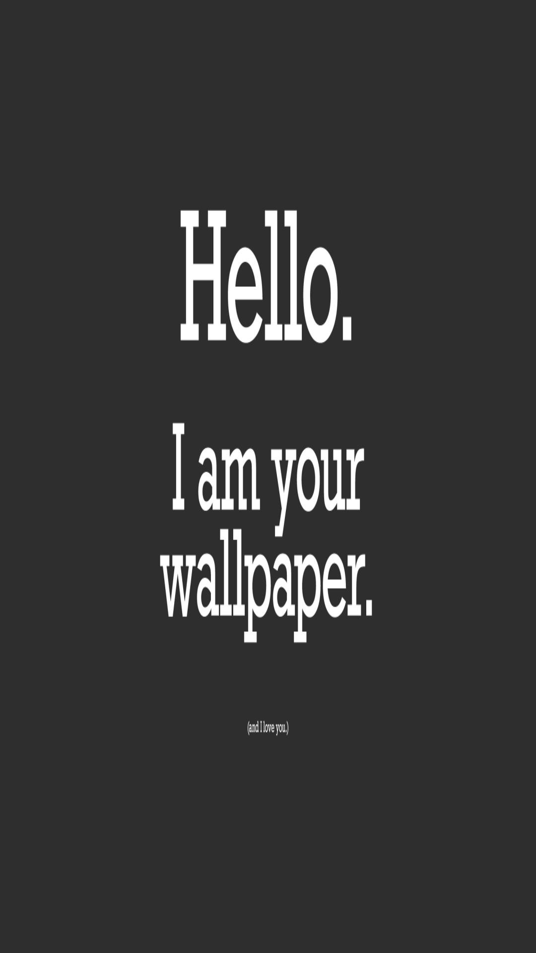 Funny Wallpapers 1280x1024 59 Pictures