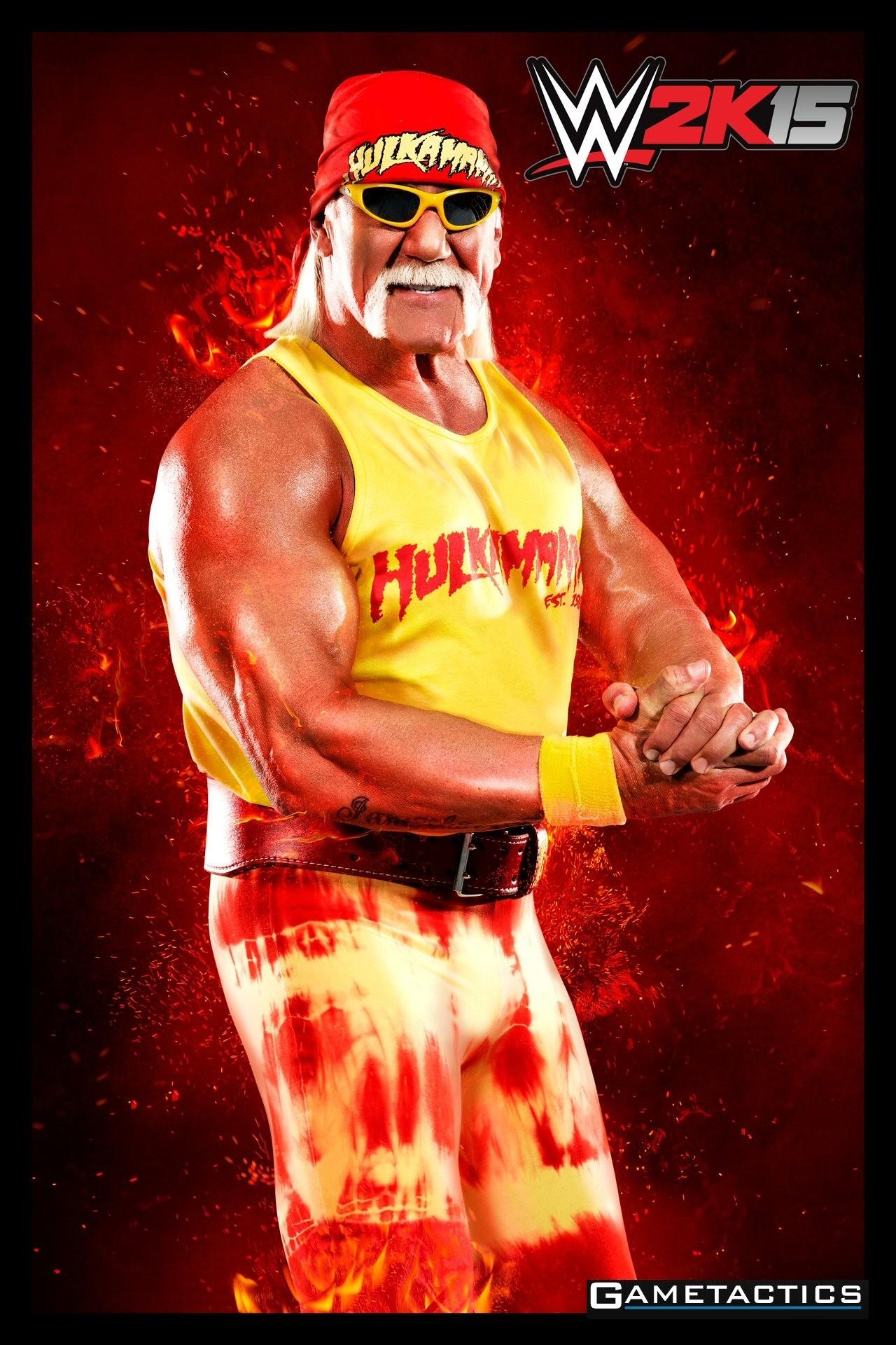 Hulk Hogan Wallpaper (73+ pictures)