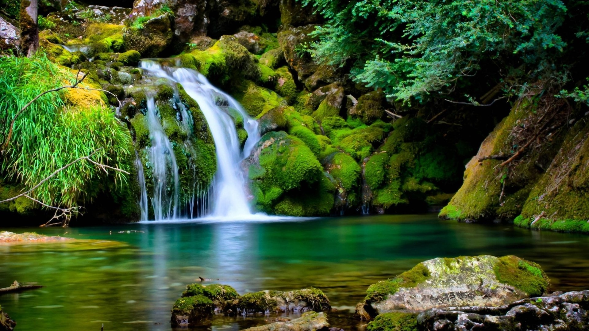Best Nature Wallpaper 54 Pictures