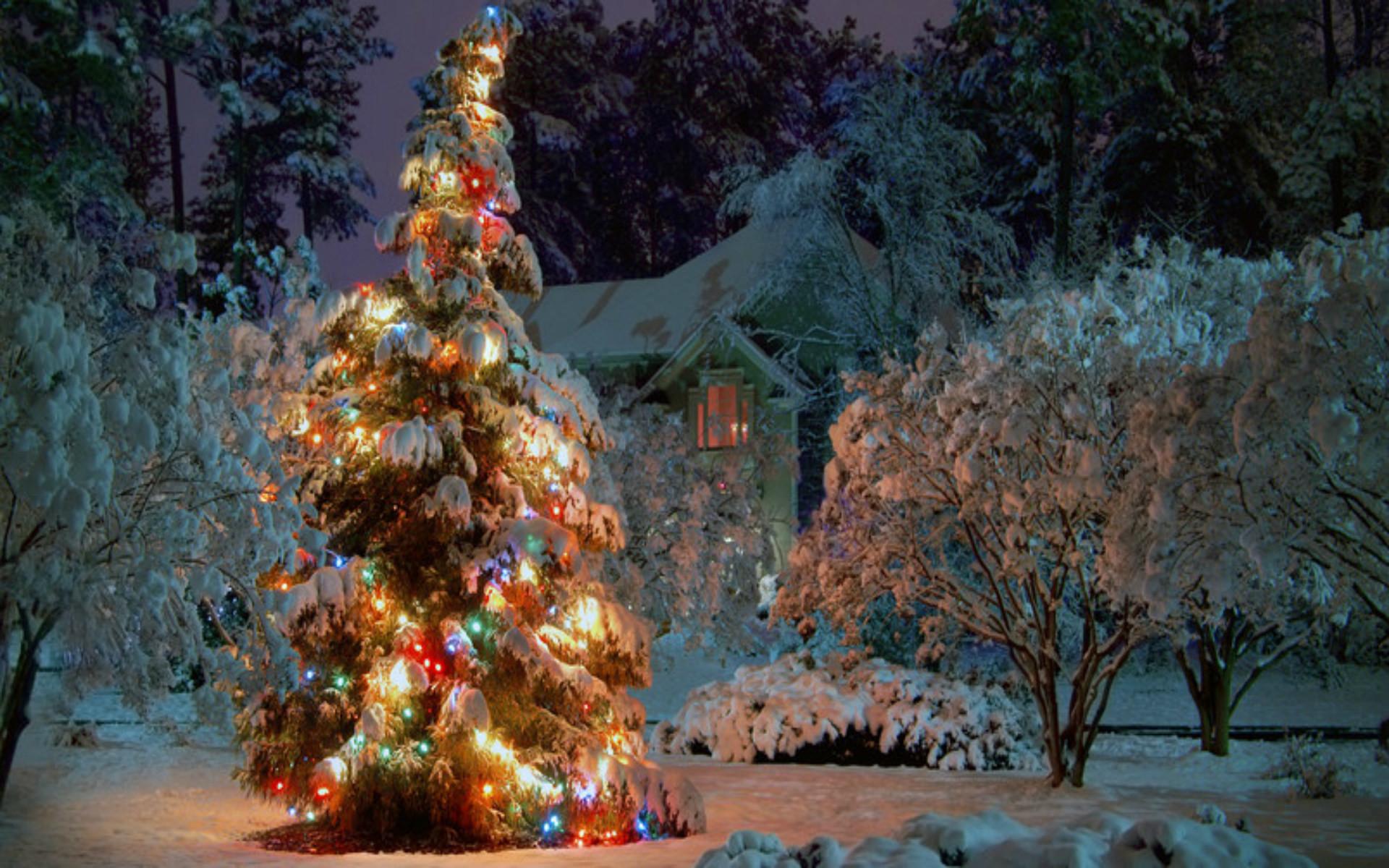 Iphone Harry Potter Christmas Wallpaper ...
