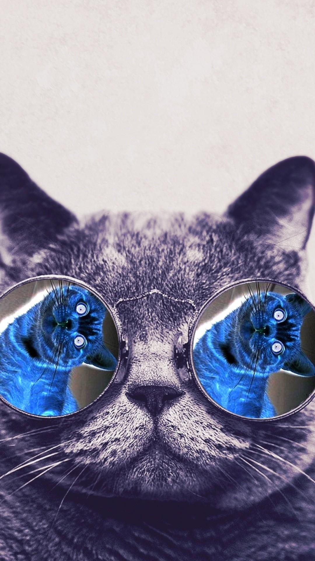 Cool Cat Wallpaper - WallpaperSafari ... 1080x1920