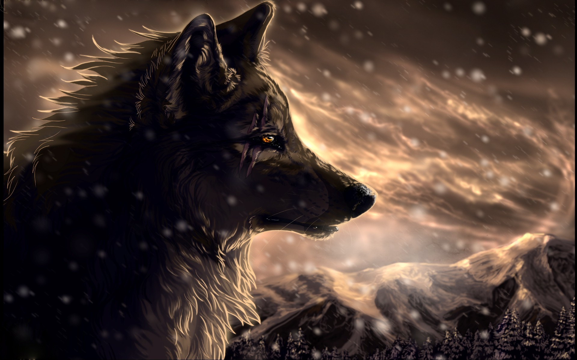 2799x1880 3113 Dark Wolf HD Images Wallpaper