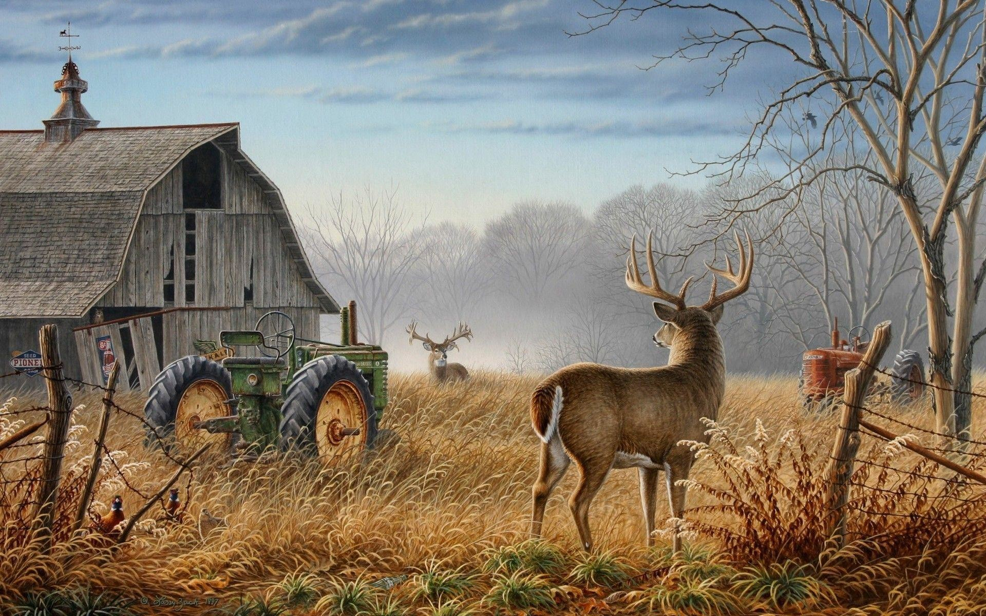 Deer Hunting Wallpaper For Computer 56 Pictures