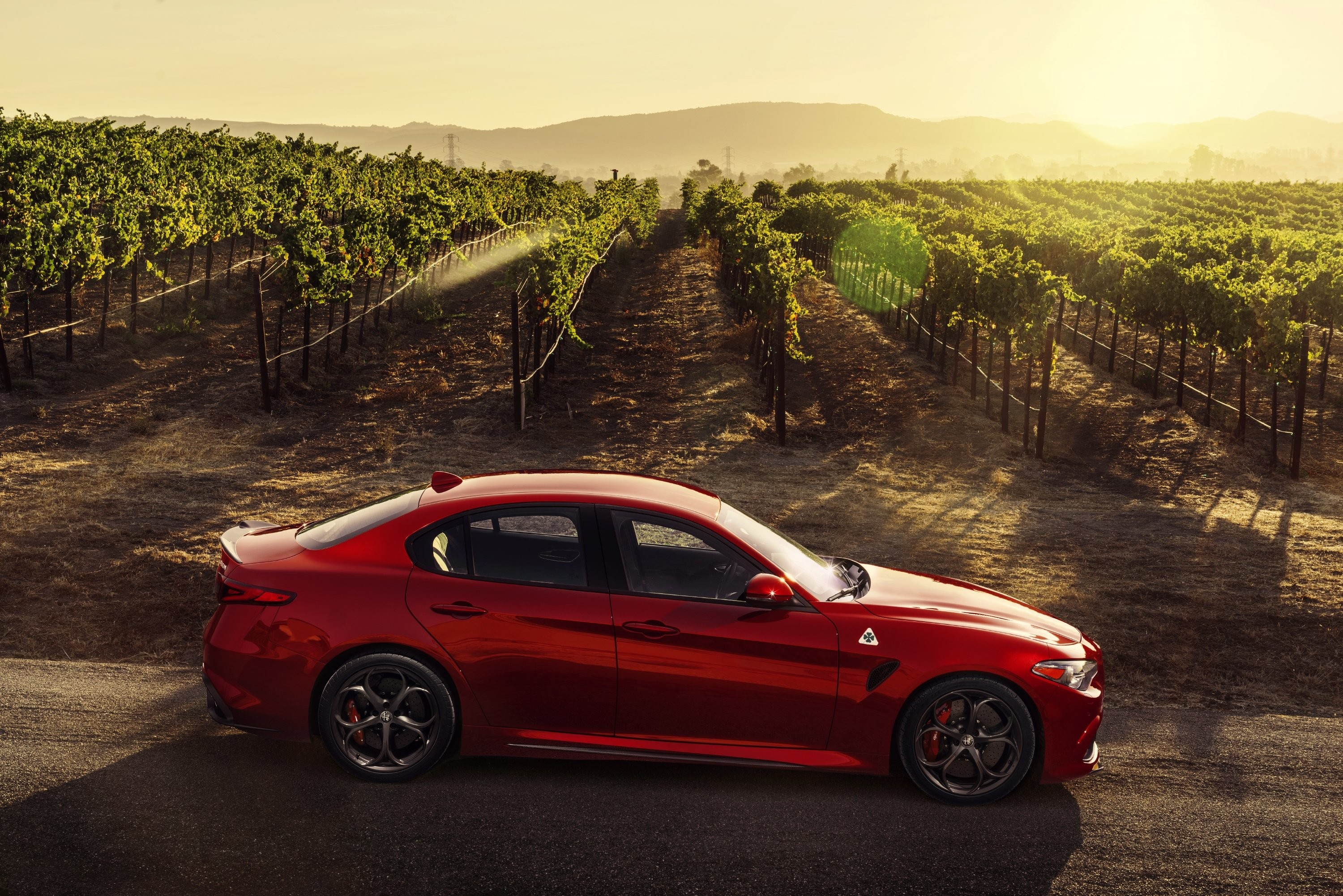 Alfa Romeo Wallpaper 71 Pictures