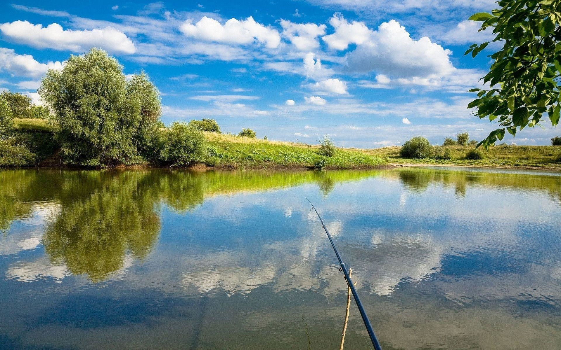 Largemouth Bass Backgrounds 46 Pictures