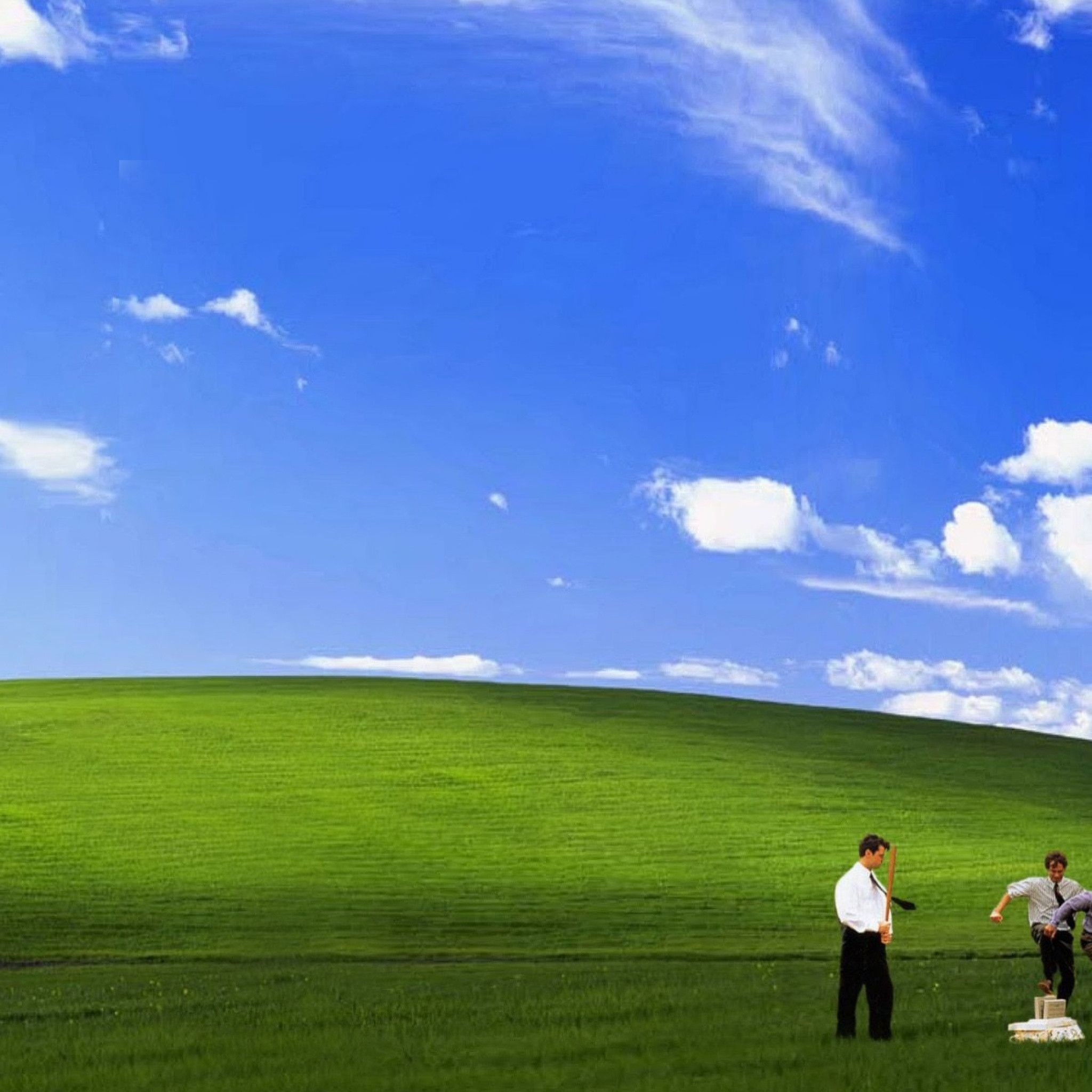 Funny Windows Backgrounds 52 Pictures