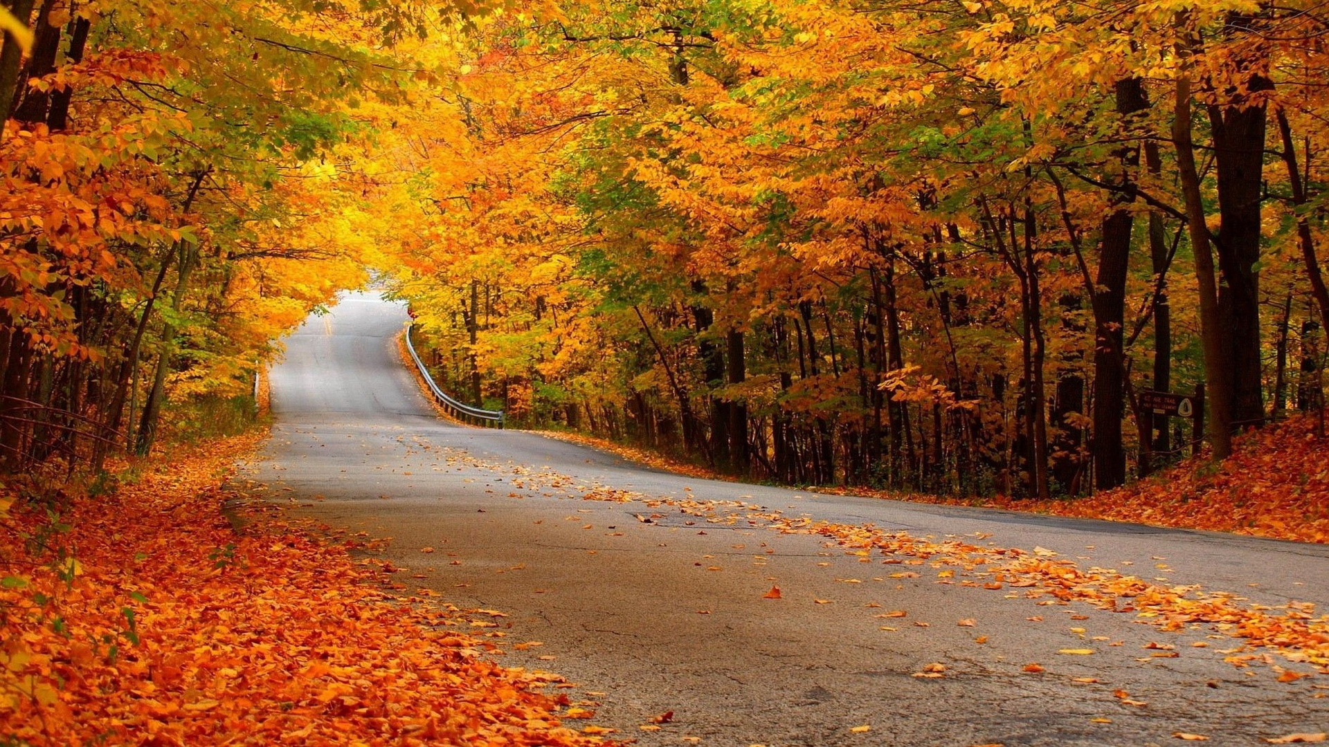 Autumn Hd Wallpapers 75 Pictures