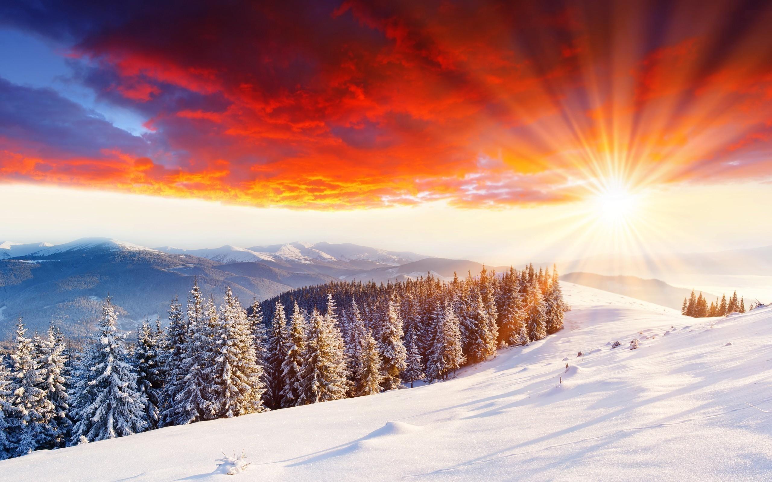1920x1200 Winter Snow Wallpapers