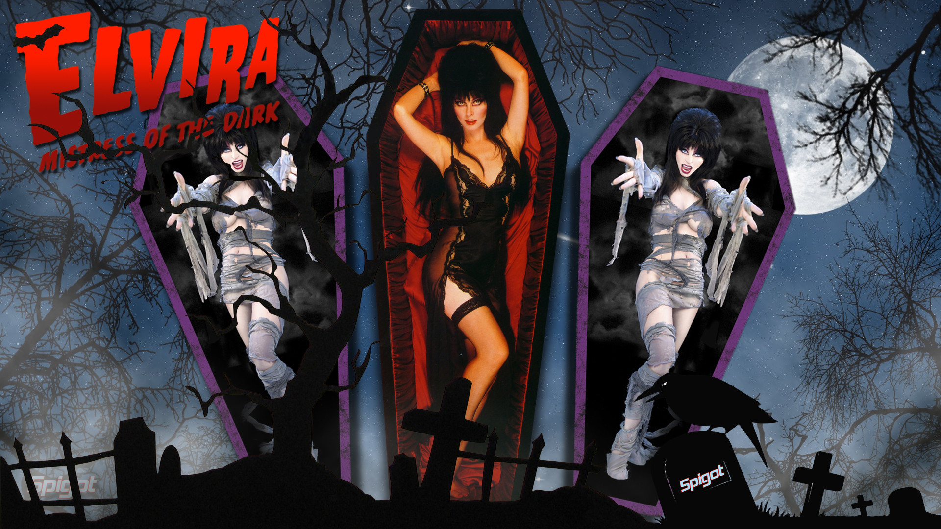 Elvira Mistress Of The Dark Wallpaper 77 Pictures