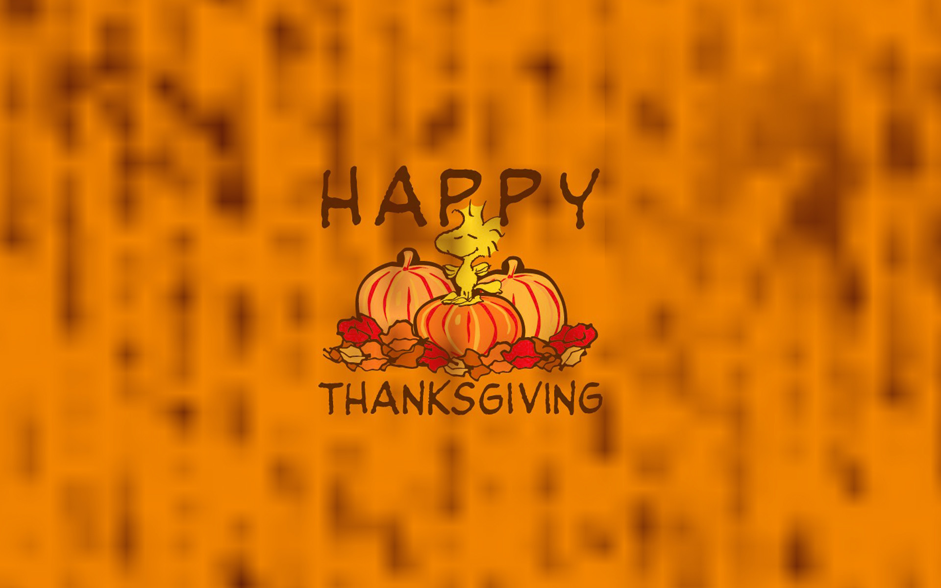 Cute Thanksgiving Backgrounds 54 Pictures