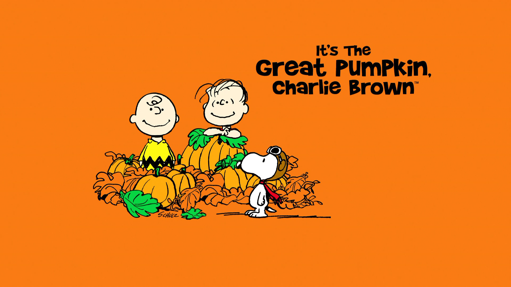 Charlie Brown Backgrounds (48+ pictures)