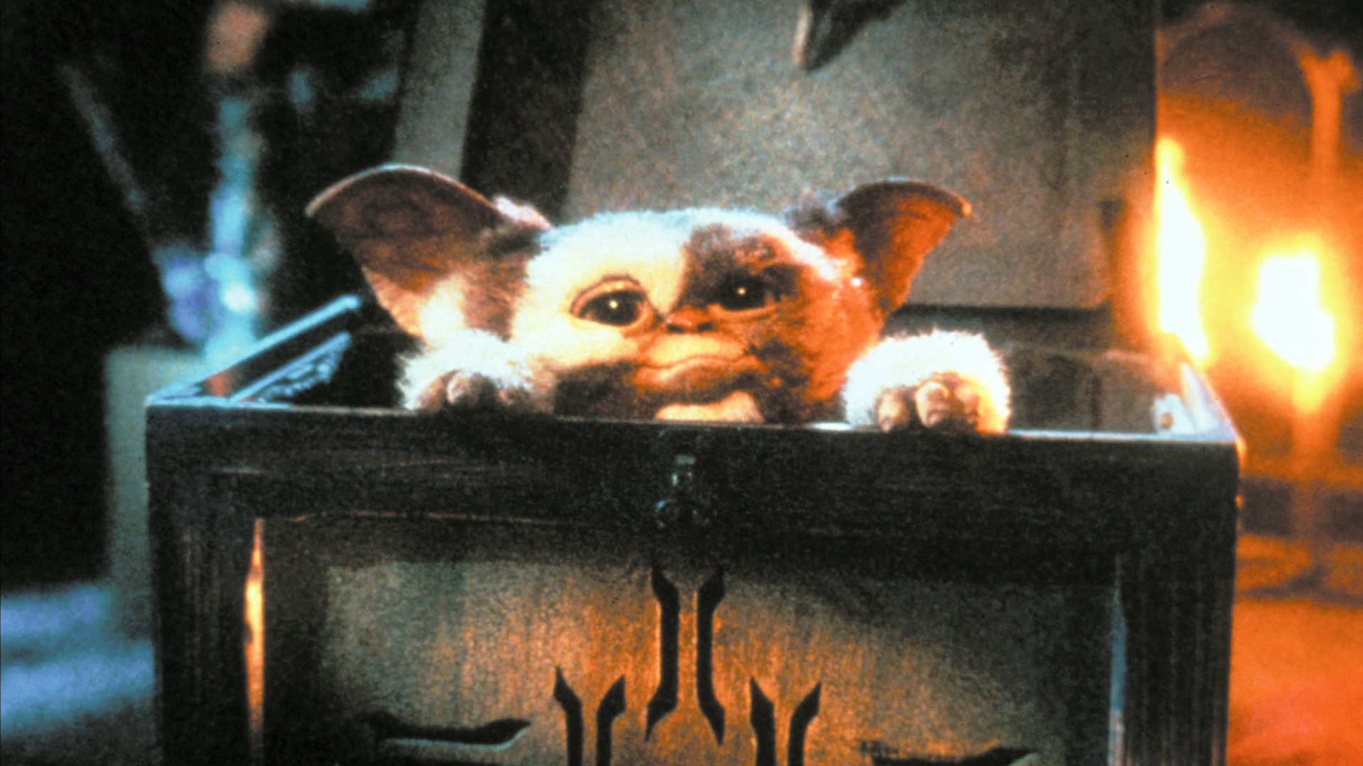 Gizmo Gremlins Wallpaper 62 Pictures