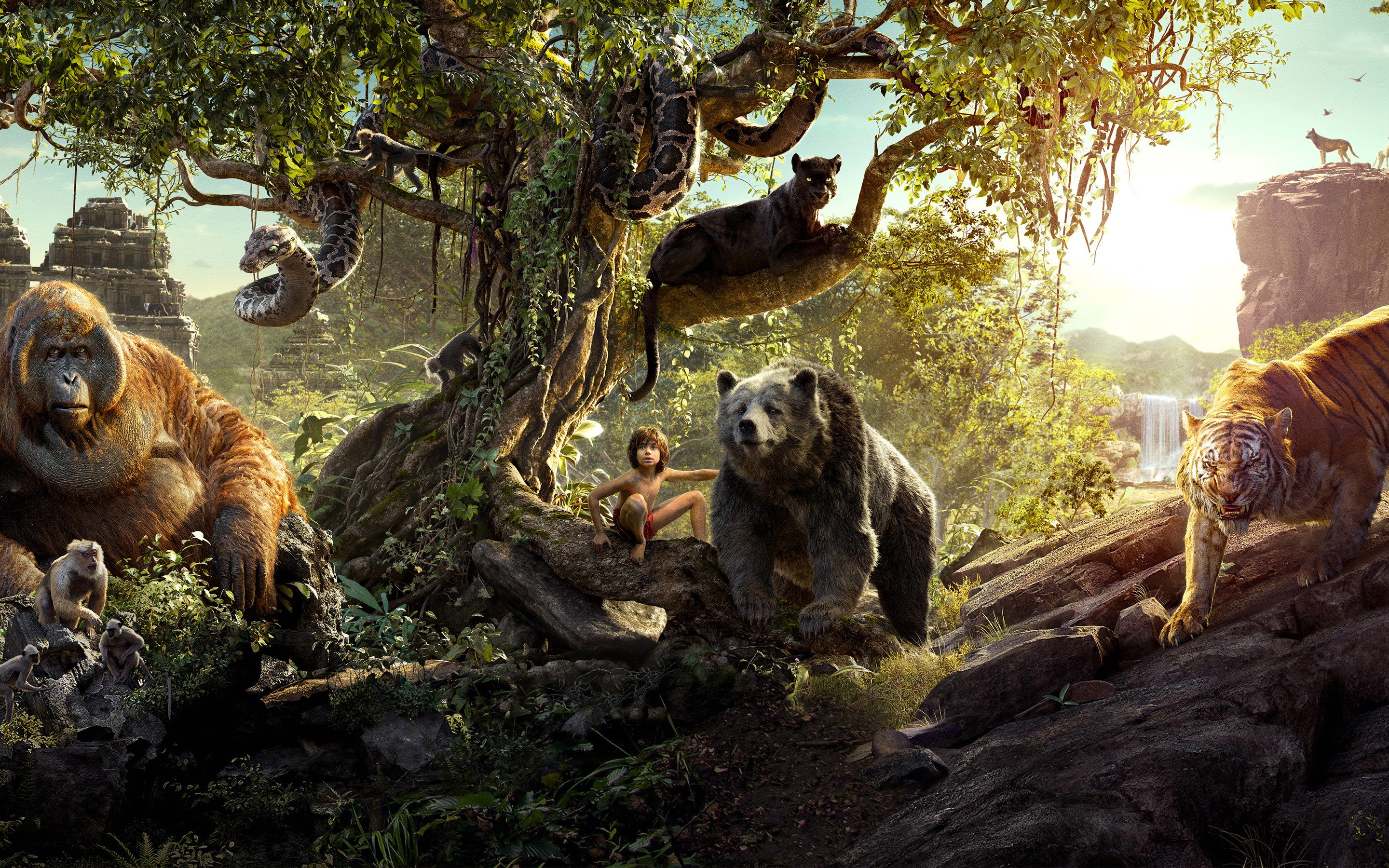 The Jungle Book Wallpapers 71 Pictures