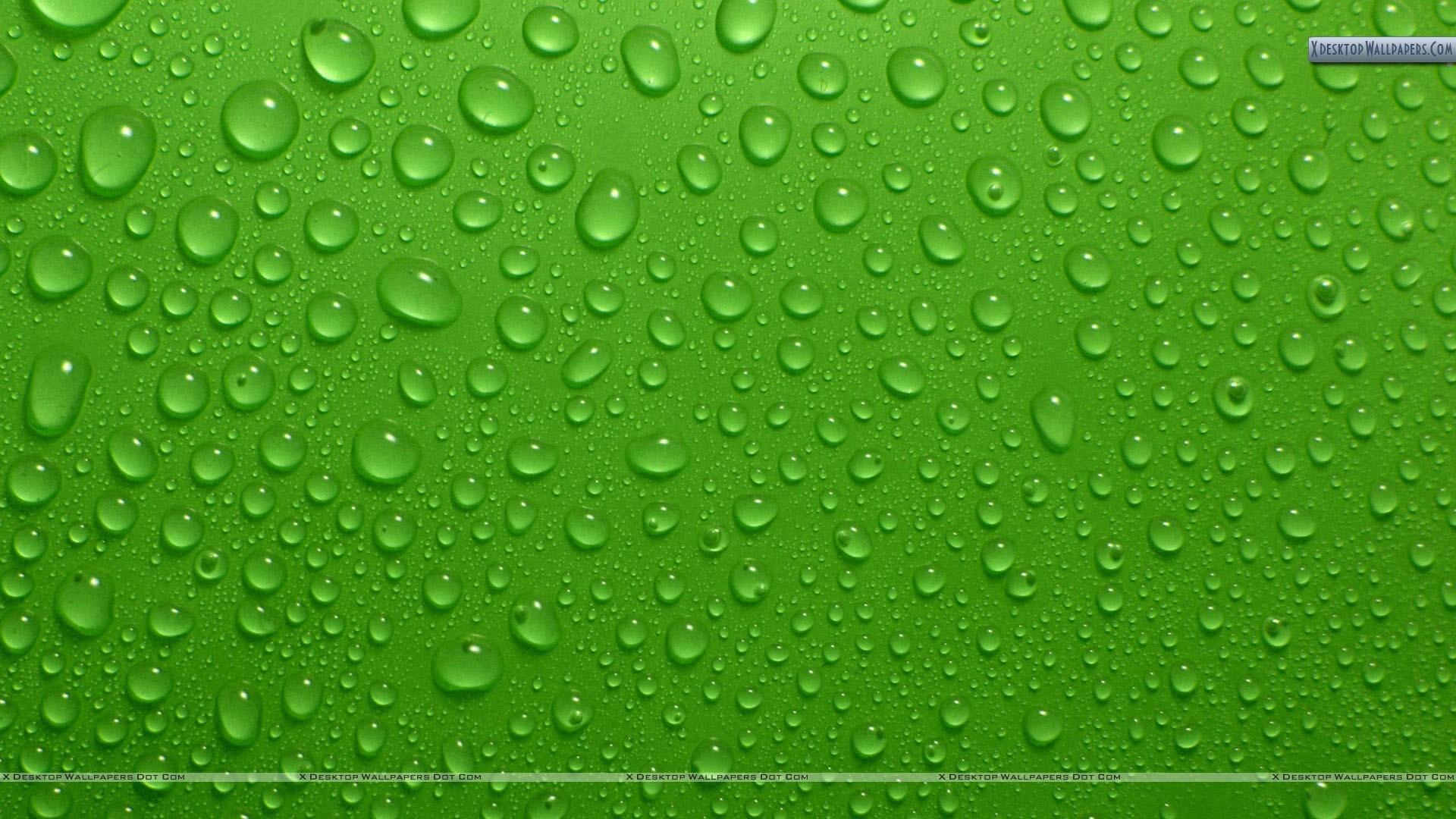 Green Desktop Backgrounds 73 Pictures