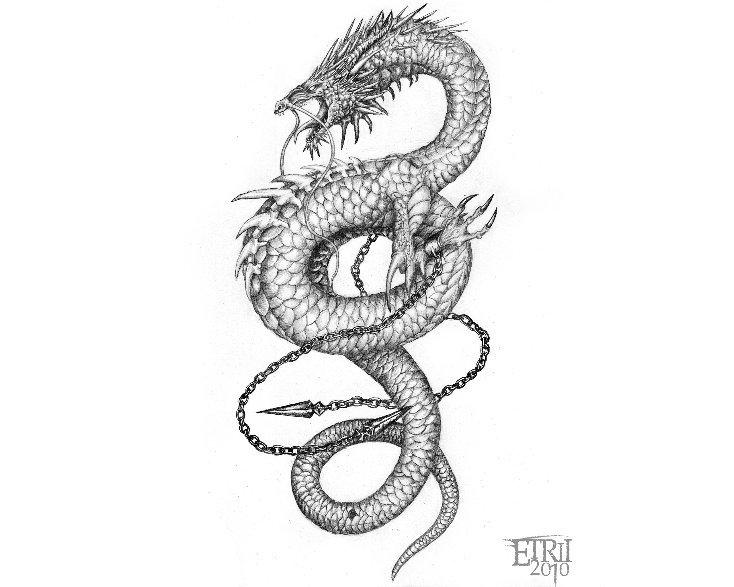 Asian Dragon Wallpaper (66+ pictures)