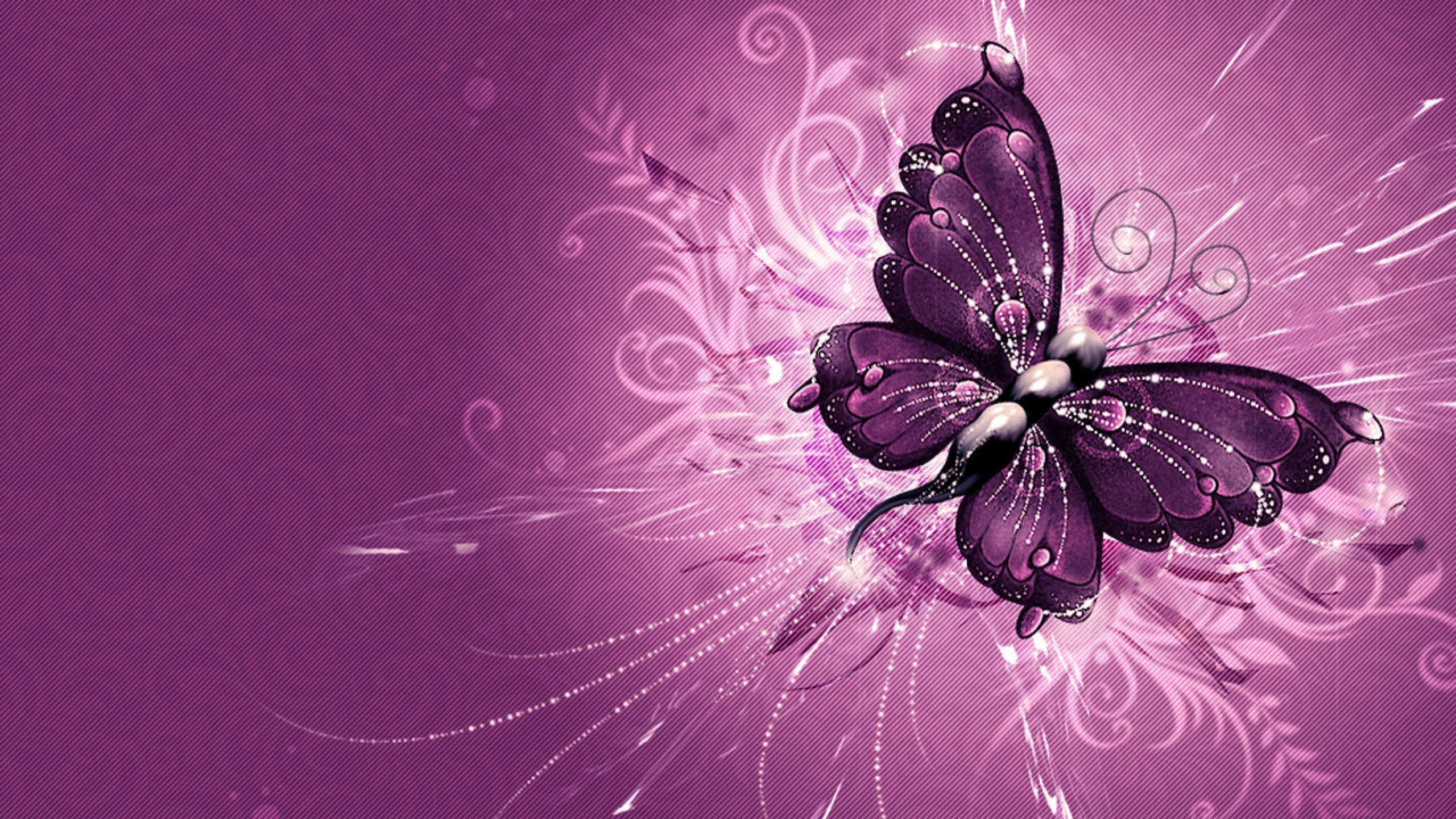 Pretty Butterfly Backgrounds 51 Pictures