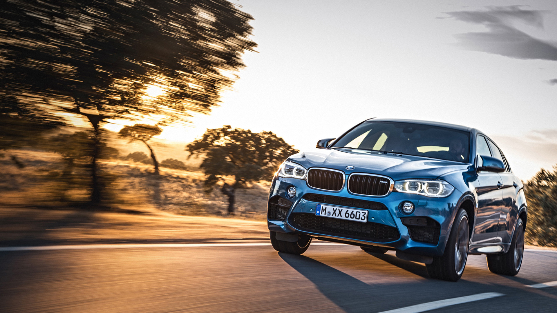 BMW X6 Wallpaper (69+ pictures)