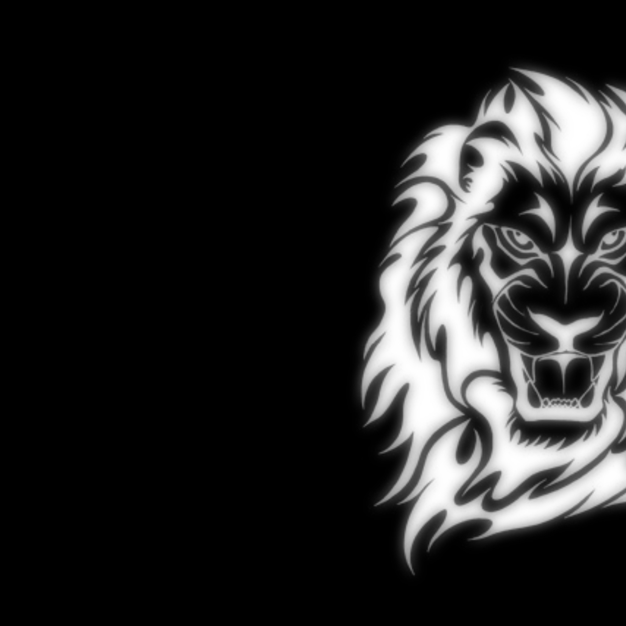 White Lion Iphone X Wallpaper Fitrini S Wallpaper