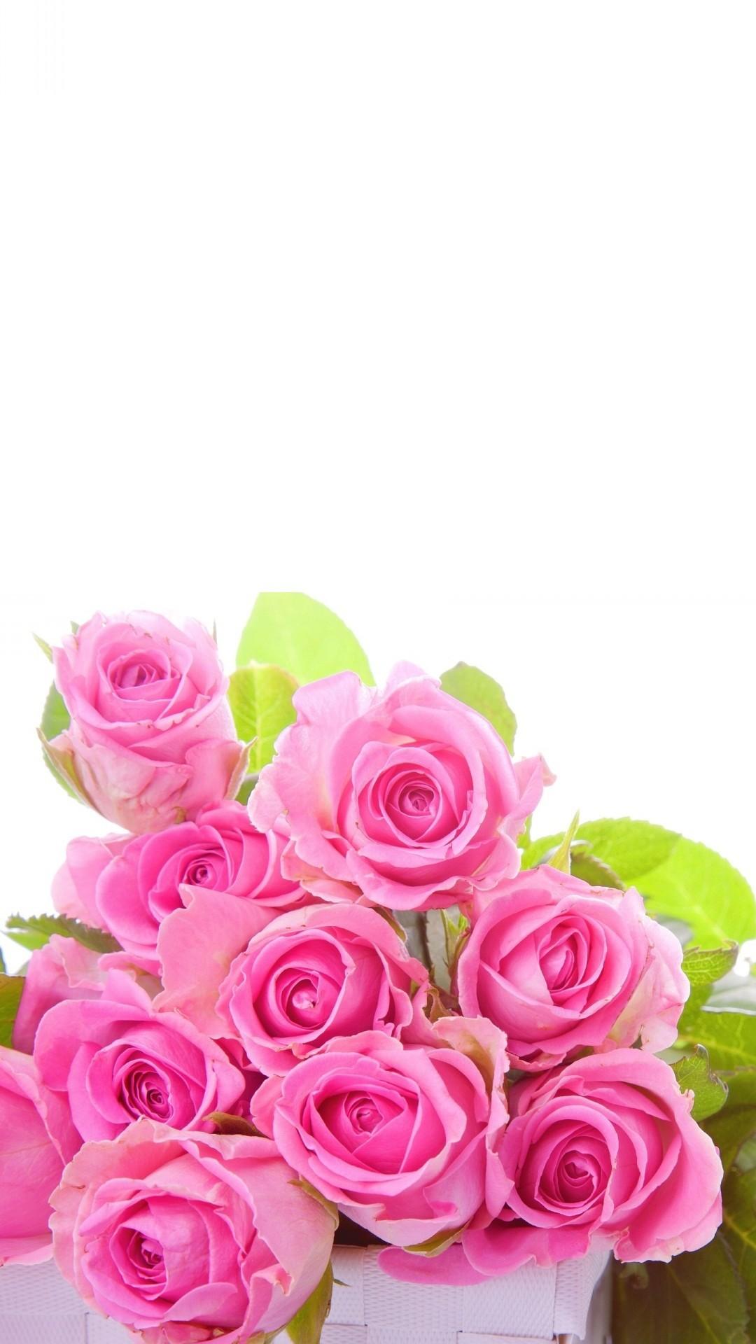 1920x1080 Pink Rose Wallpaper HD 46814