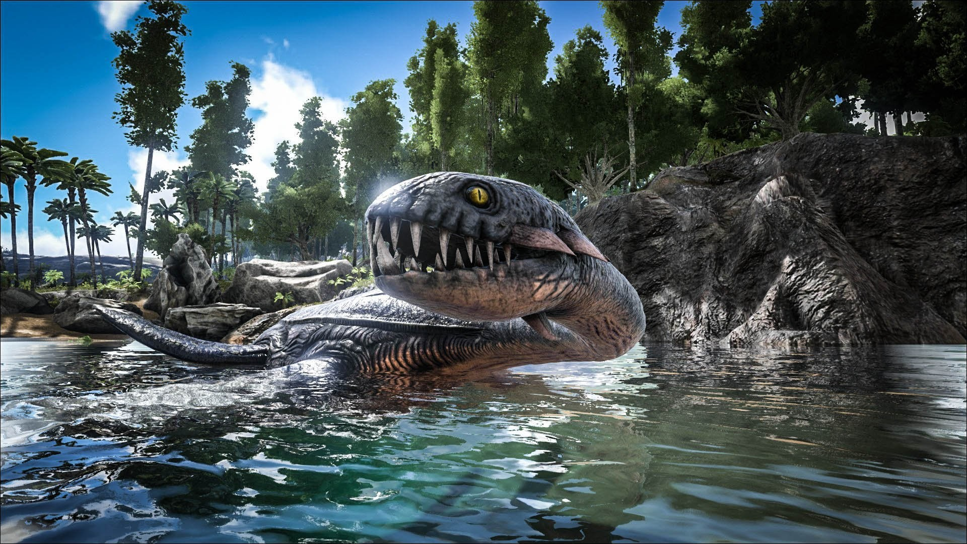 Velociraptor Wallpapers 68 Pictures