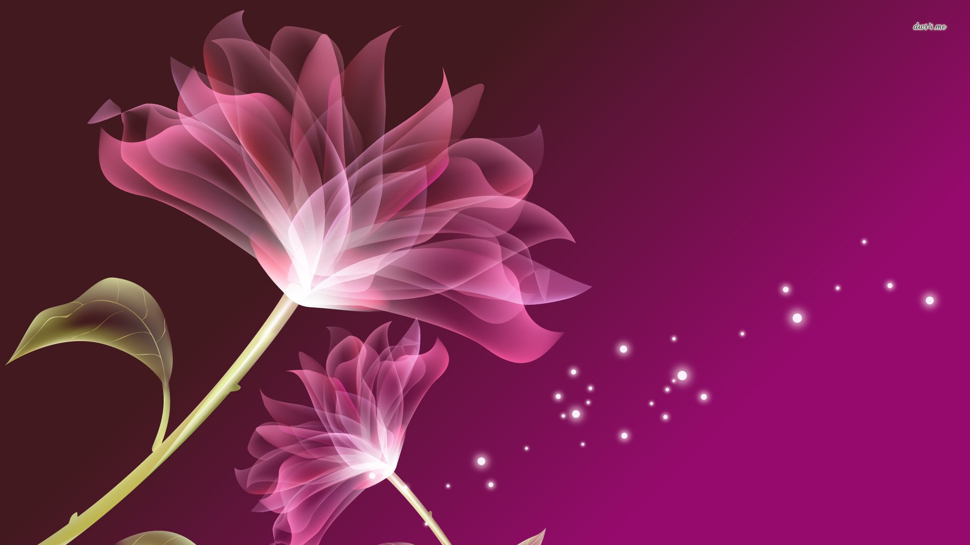 Pink And Purple Flower Backgrounds 59 Pictures