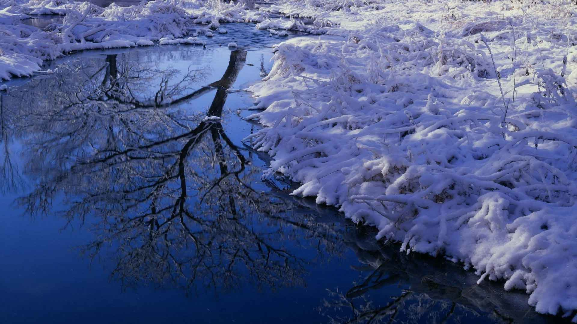 Nature Winter Wallpapers 67 Pictures