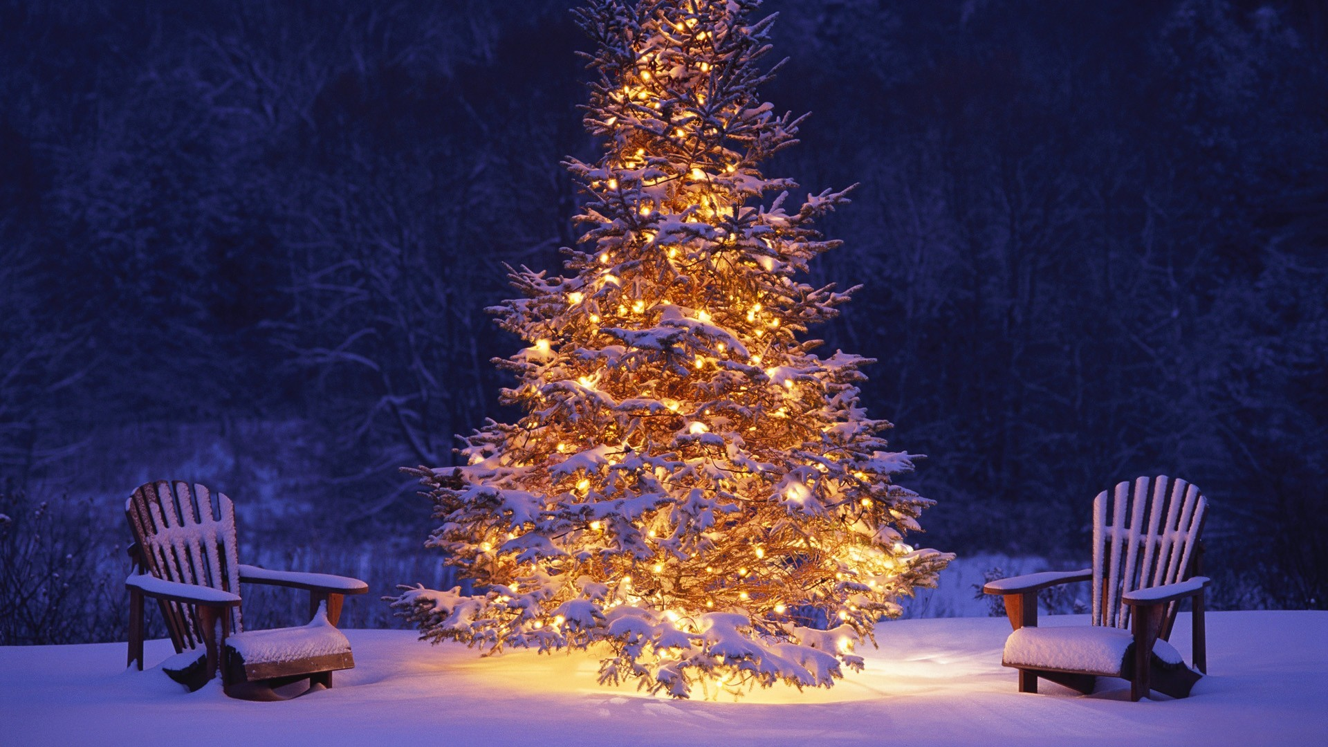 Christmas Screen Backgrounds 61 Pictures