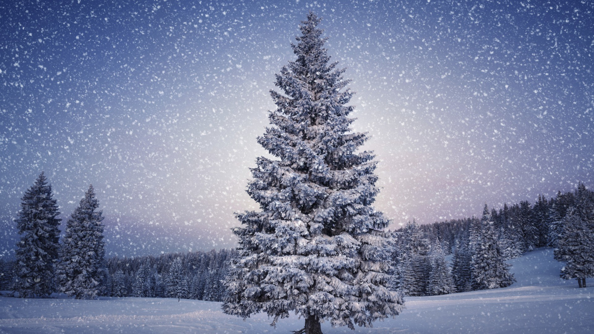 Snowy scene wallpaper 54 pictures christmas snow scene 1920x1080 voltagebd Image collections