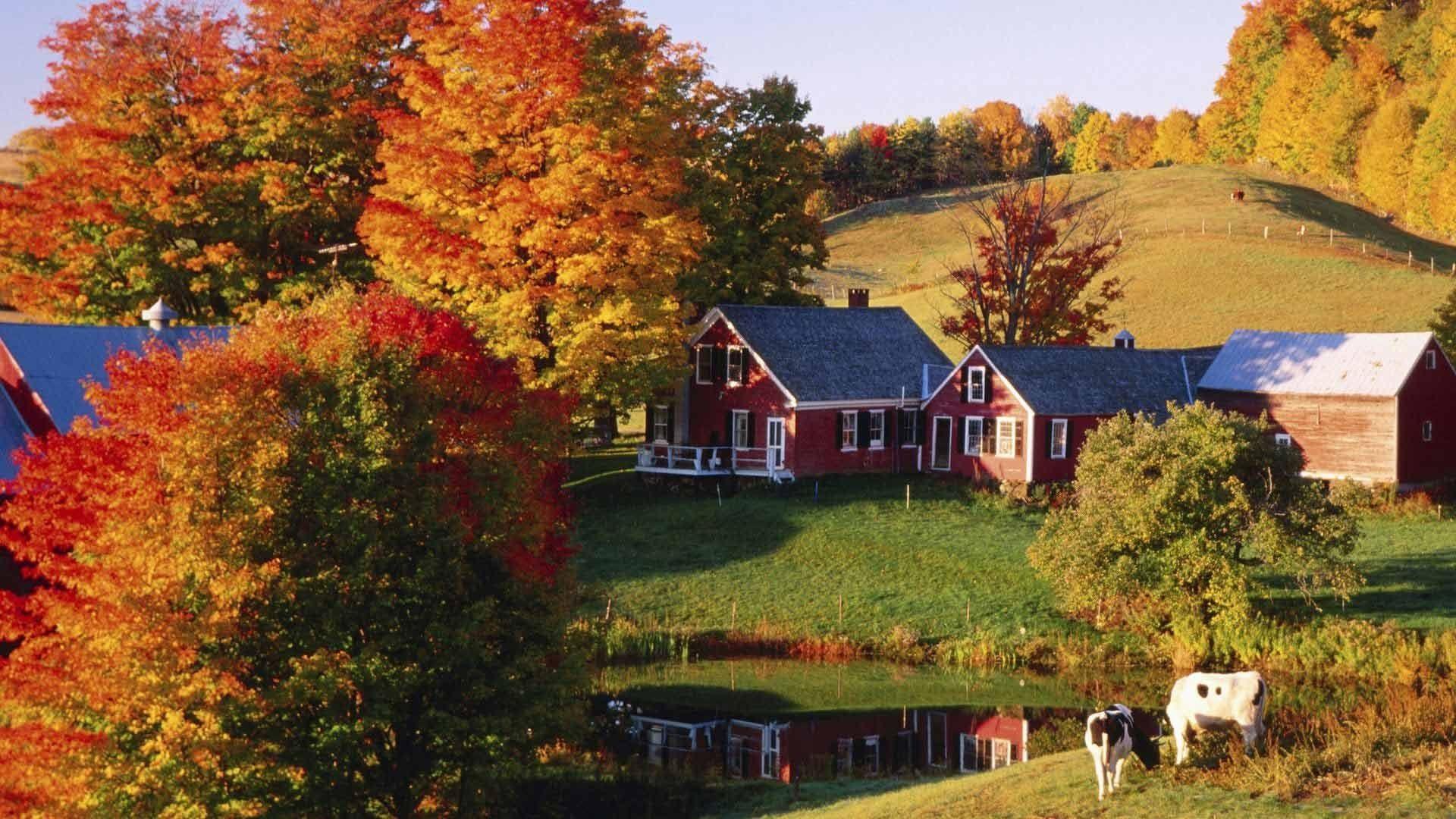 Autumn Wallpaper For Desktop 61 Pictures