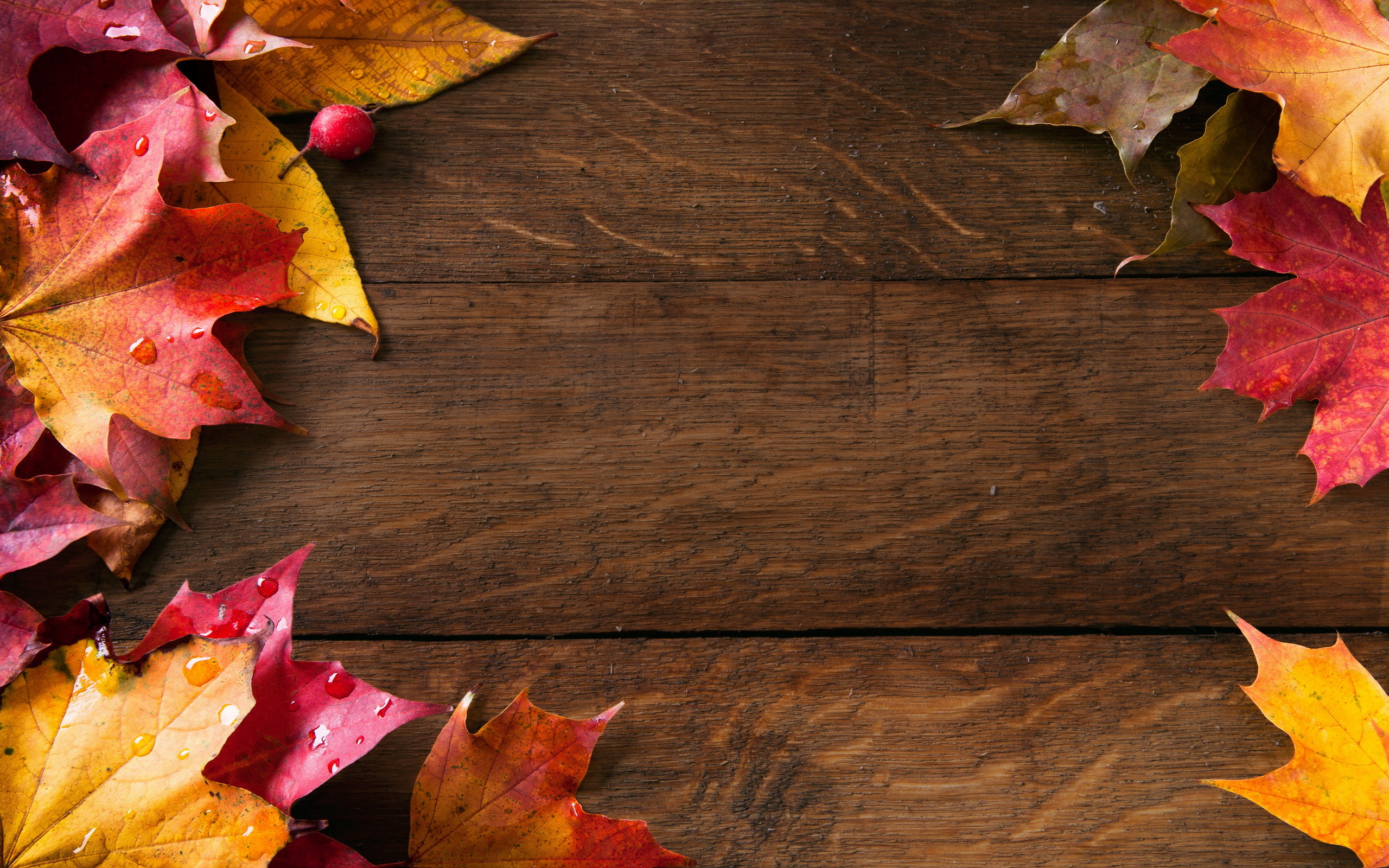 Fall Backgrounds Wallpaper 67 Pictures