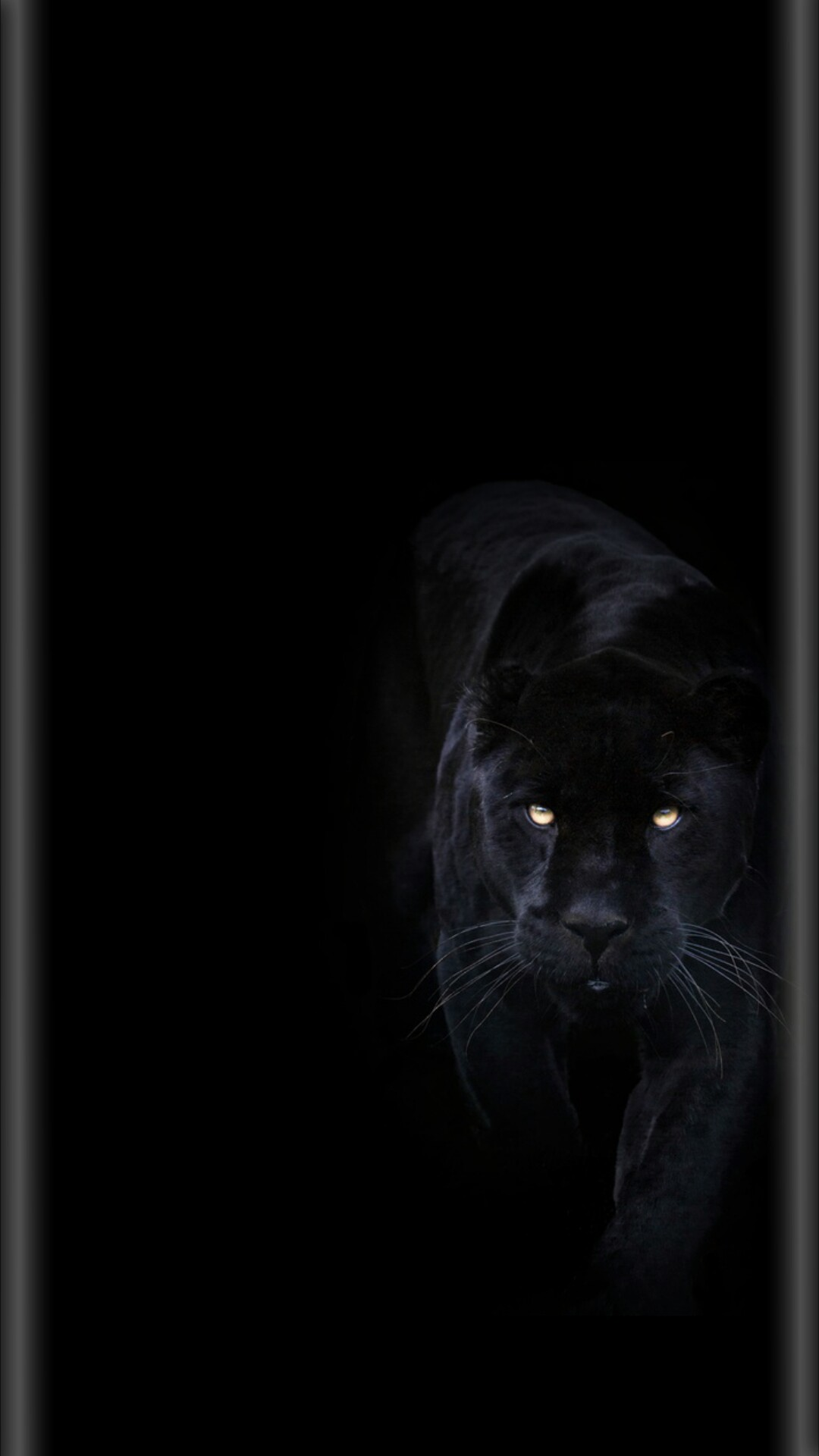 Black Panther Background 65 Pictures
