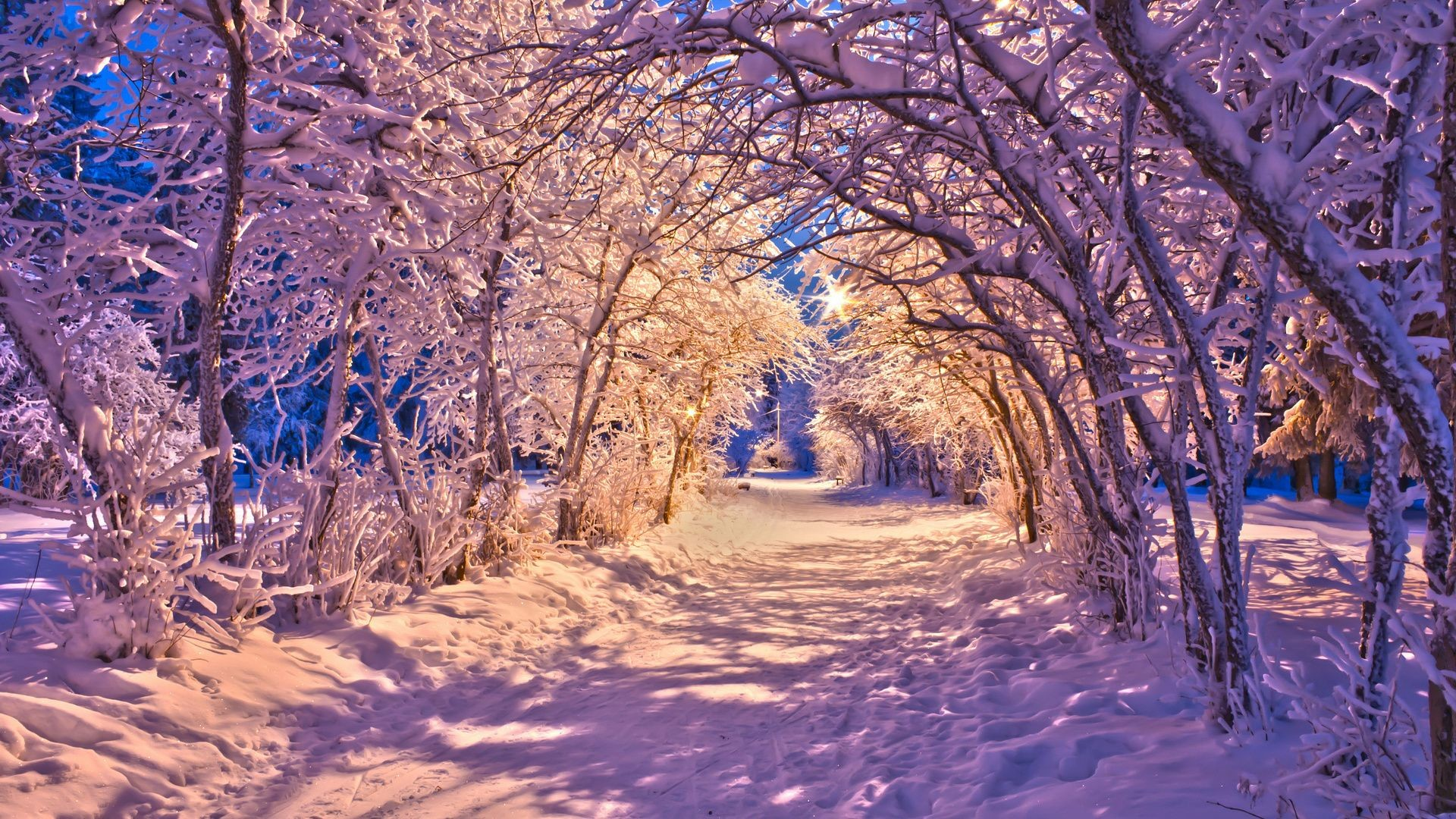 Beautiful Winter Wallpaper 71 Pictures