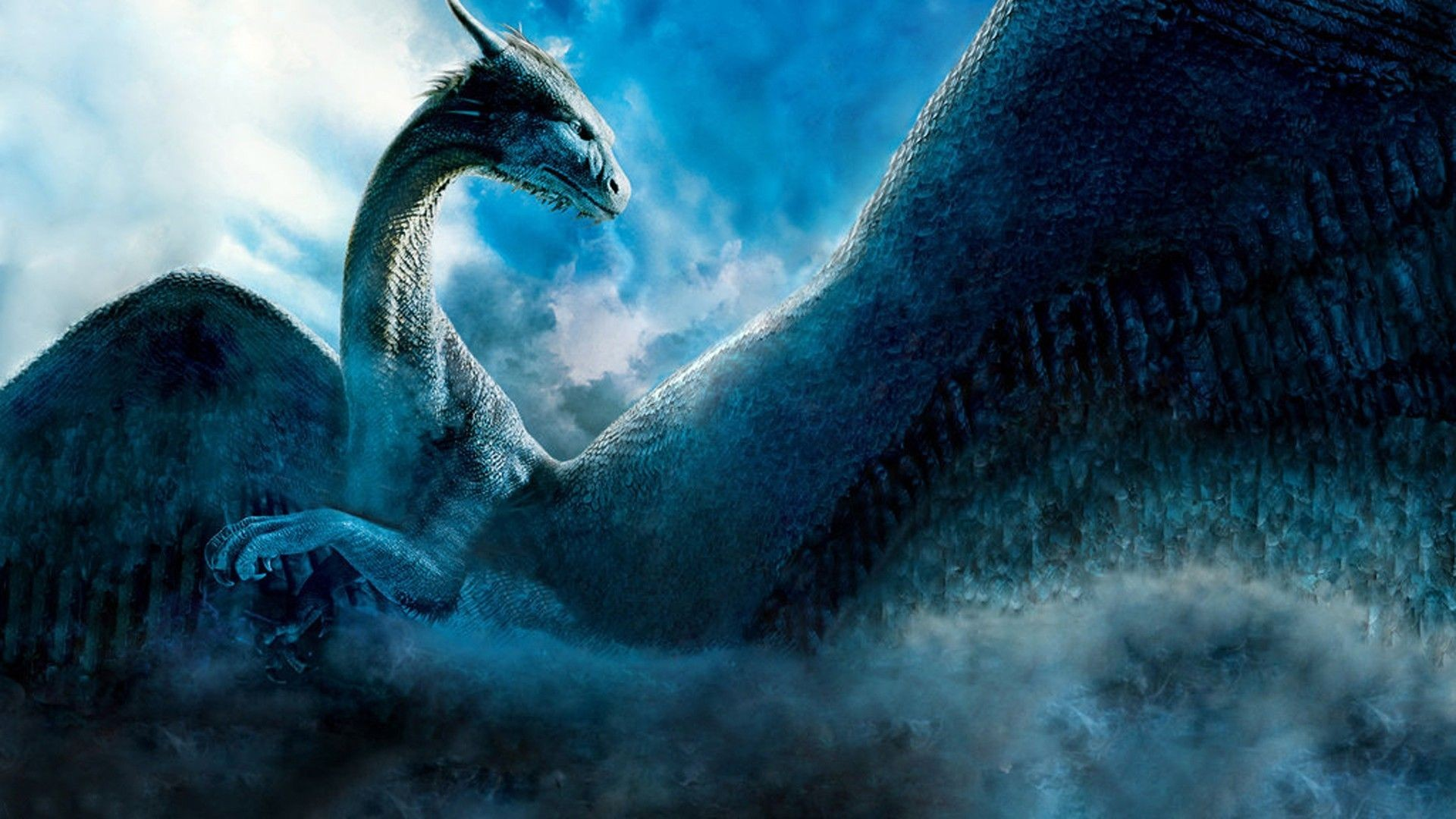 Dragon Wallpaper Widescreen 71 Pictures