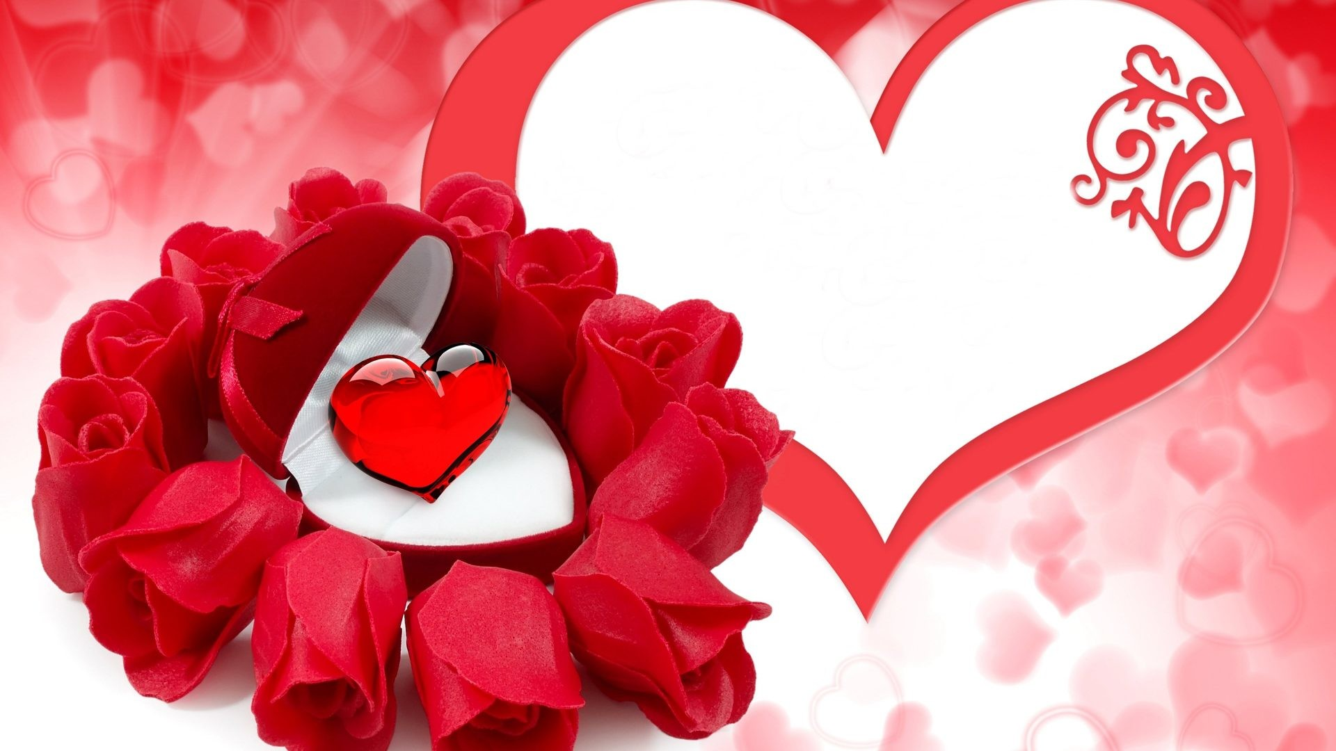 Wallpaper Flower Rose Love 42 Pictures