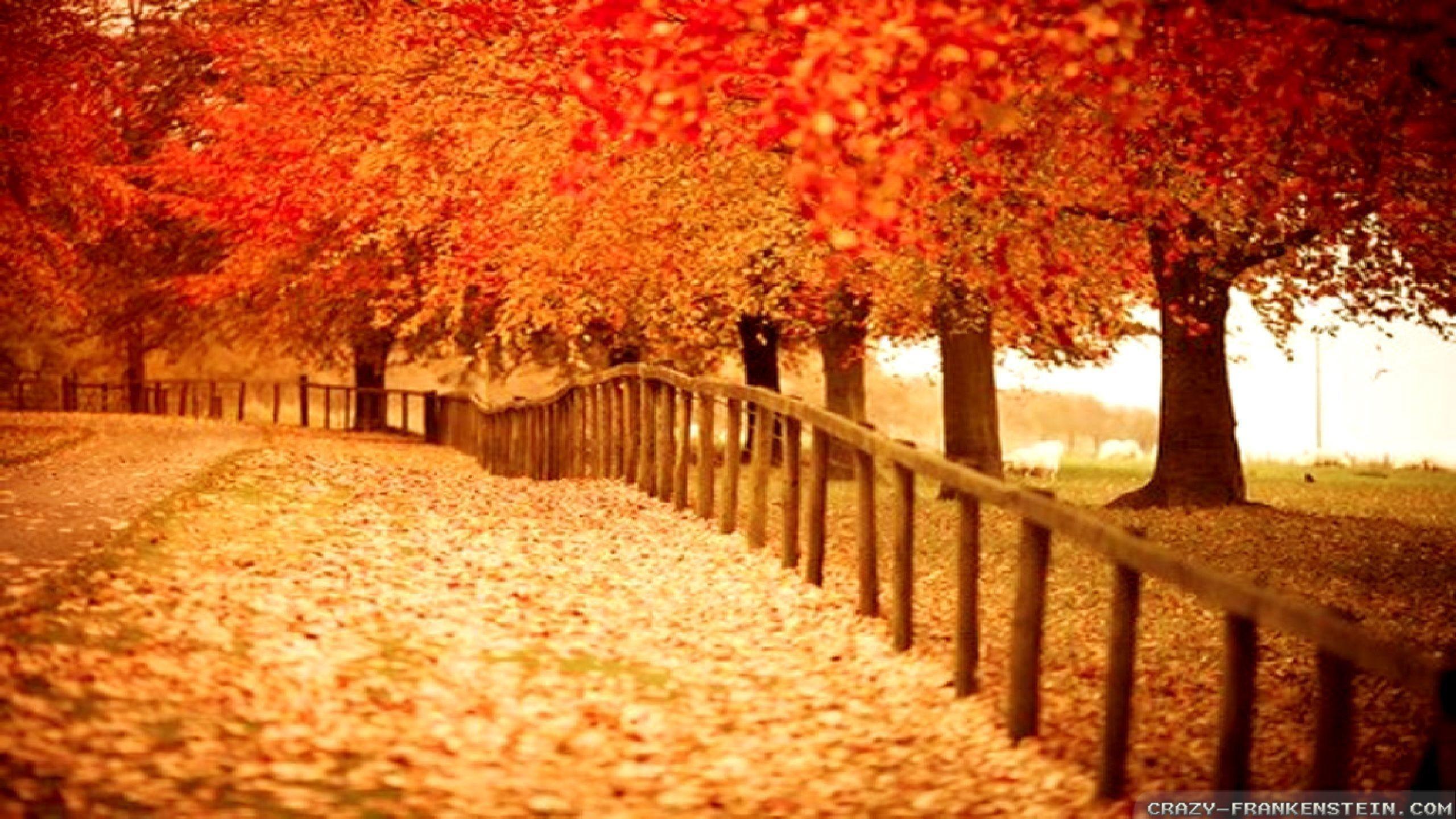 Autumn Wallpaper for Desktop (61+ pictures)