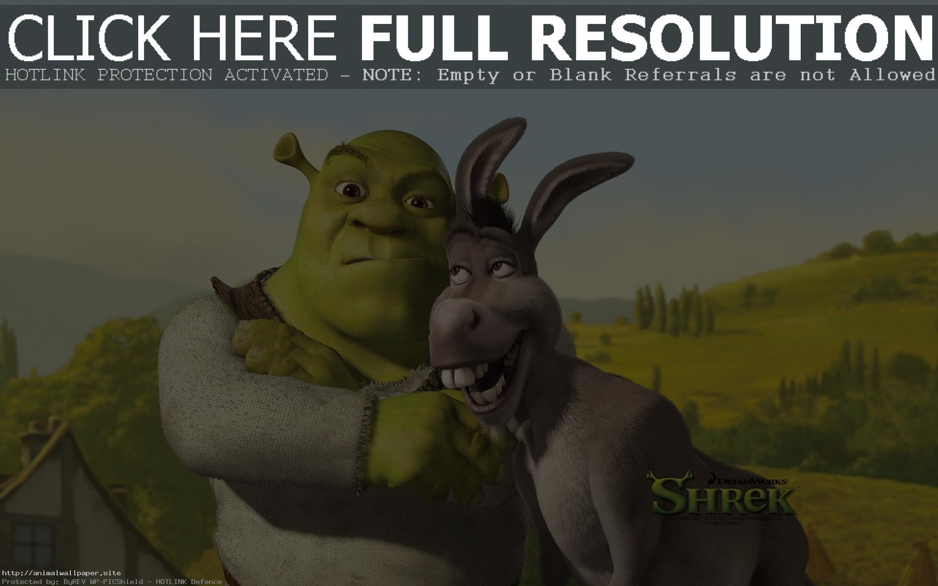 Shrek Wallpaper 70 Pictures