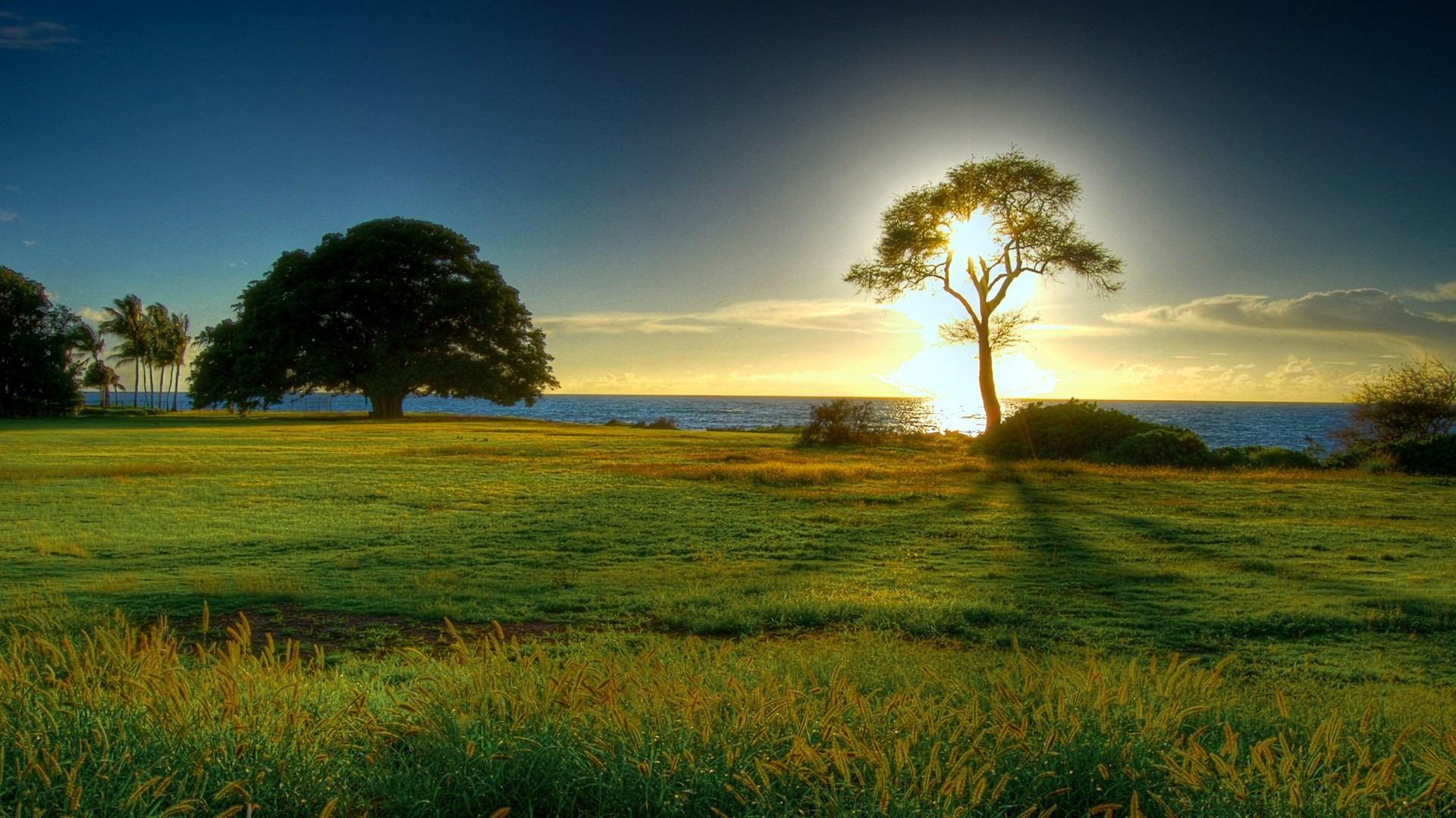 Beautiful Nature Wallpapers (57+ Pictures