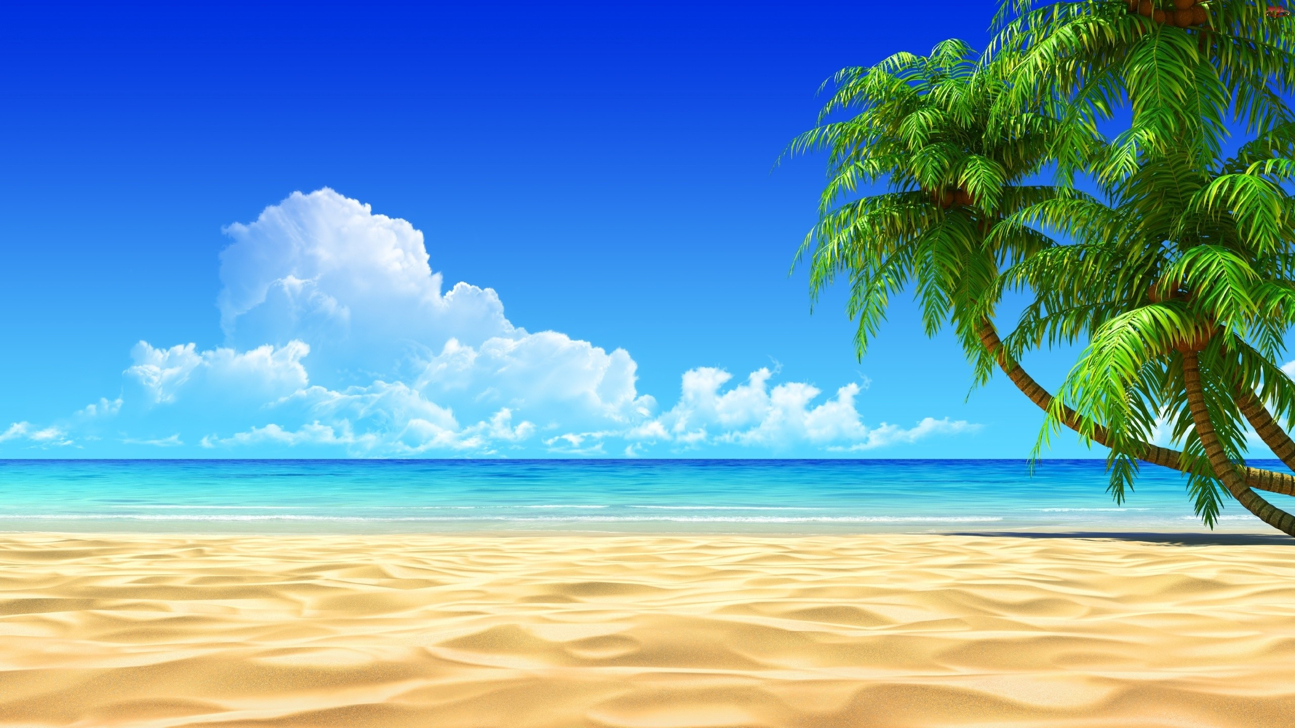 Hd Beach Wallpapers 63 Pictures