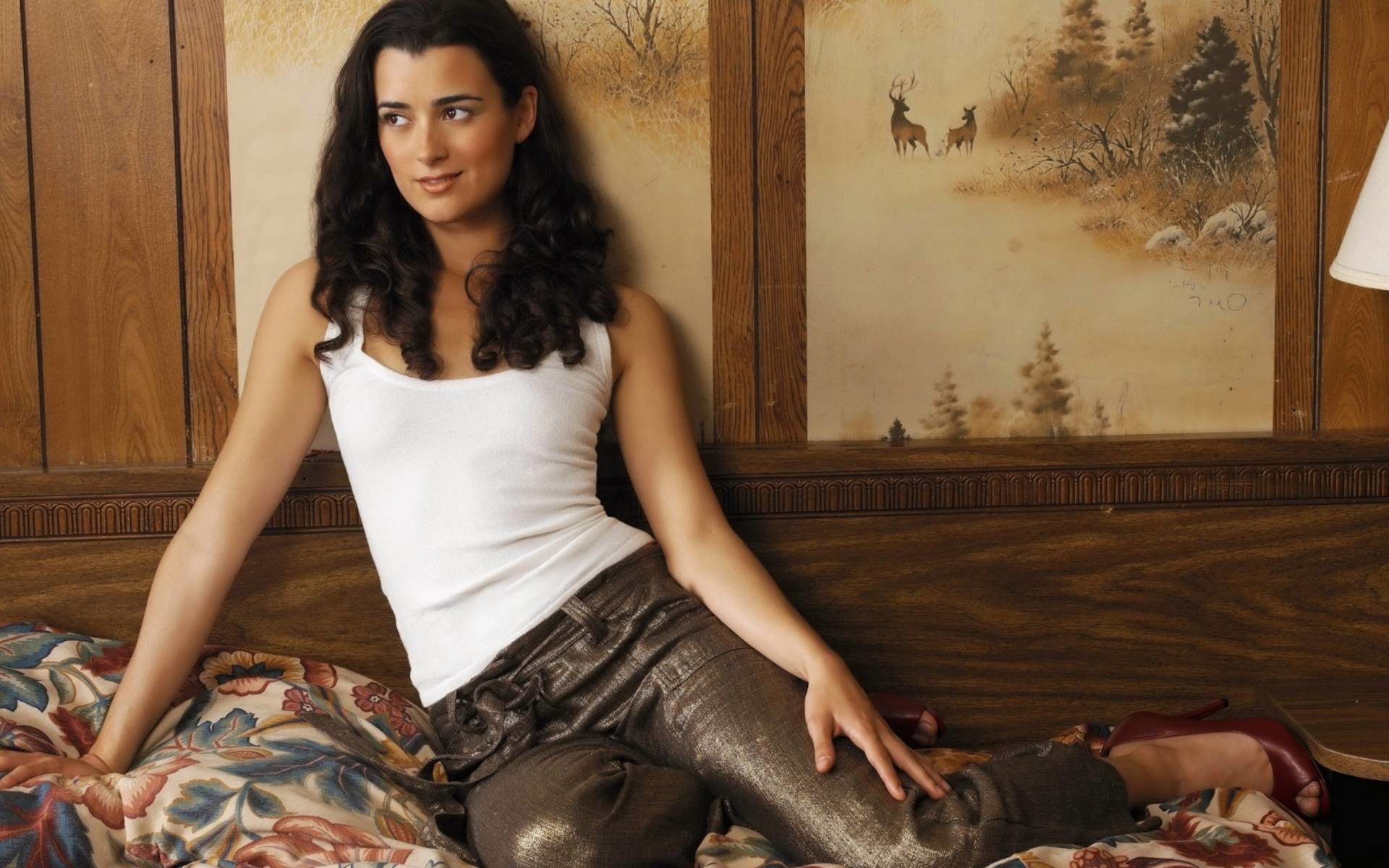 Ziva David Wallpaper 68 Pictures